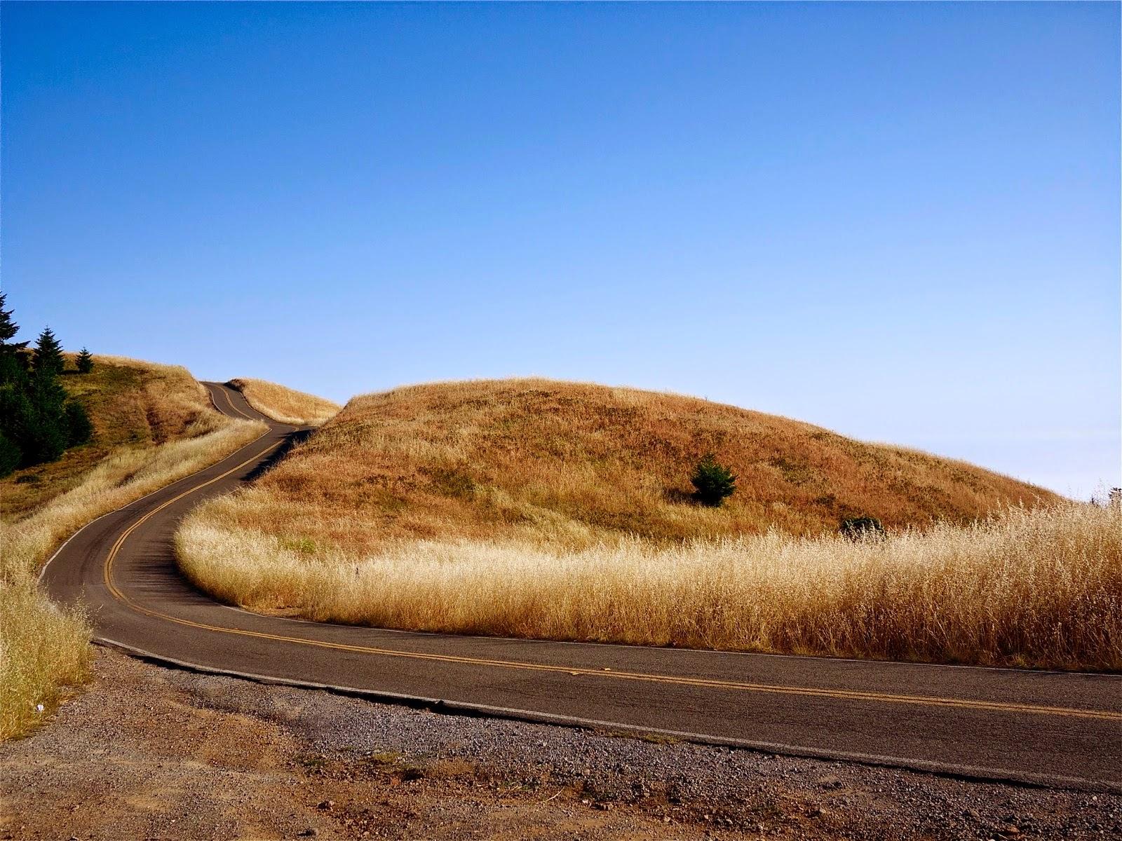 Winding Road - Mt. Tamalpais