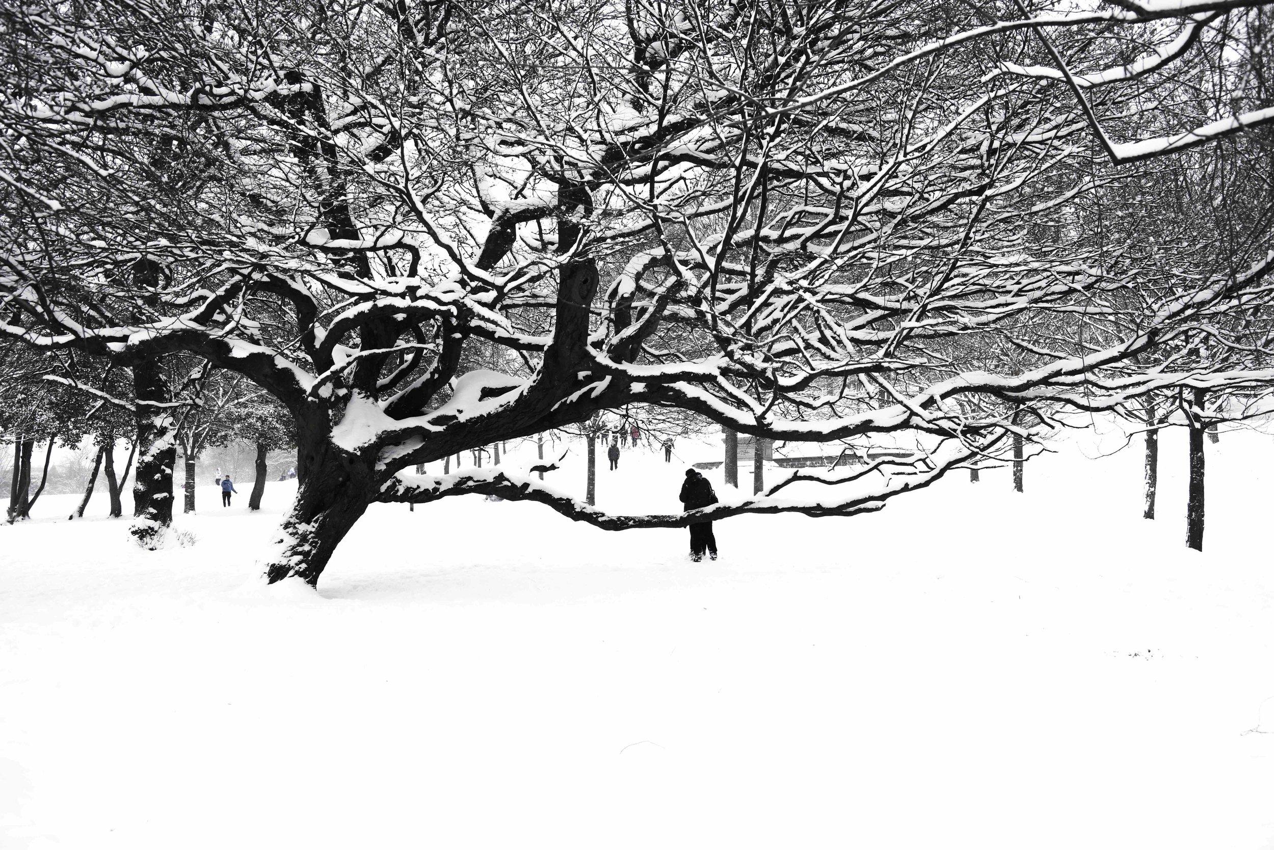 -SnowDay-6.jpg