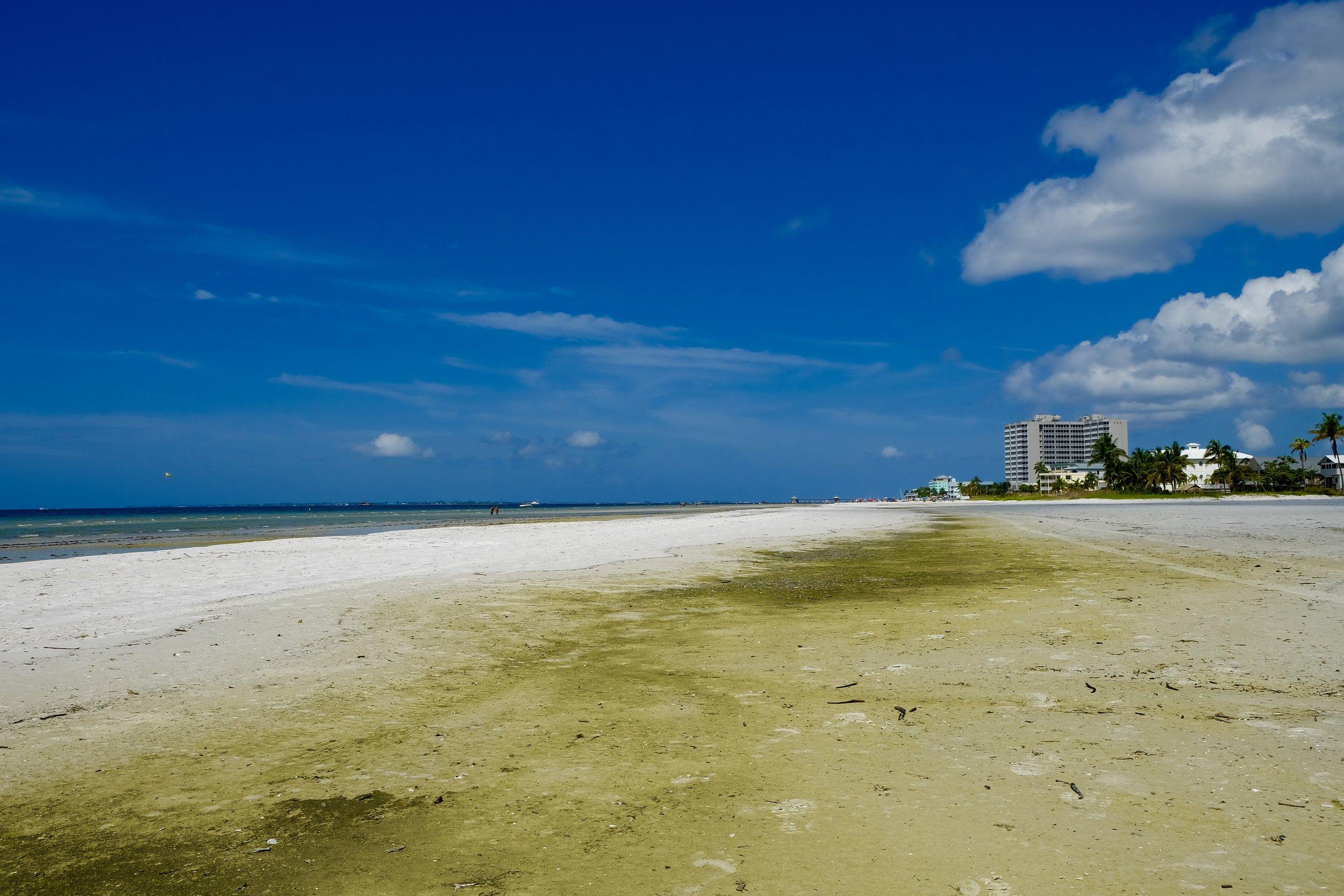 Fort Myers Beach: Green Sand
