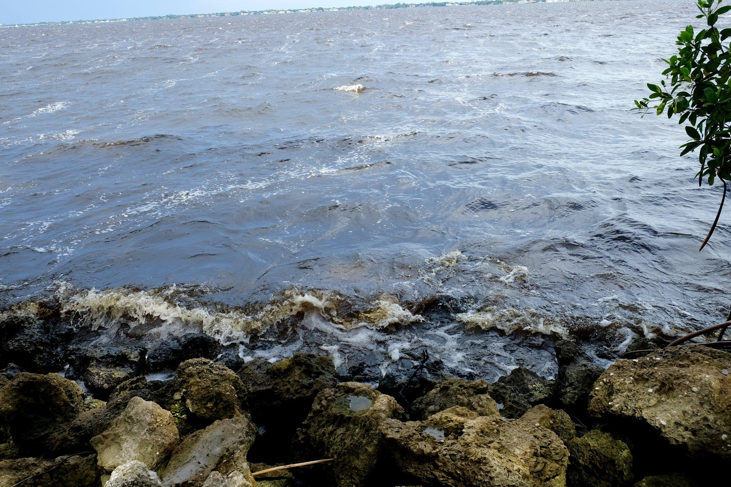 Cape Coral: Jaycee Park