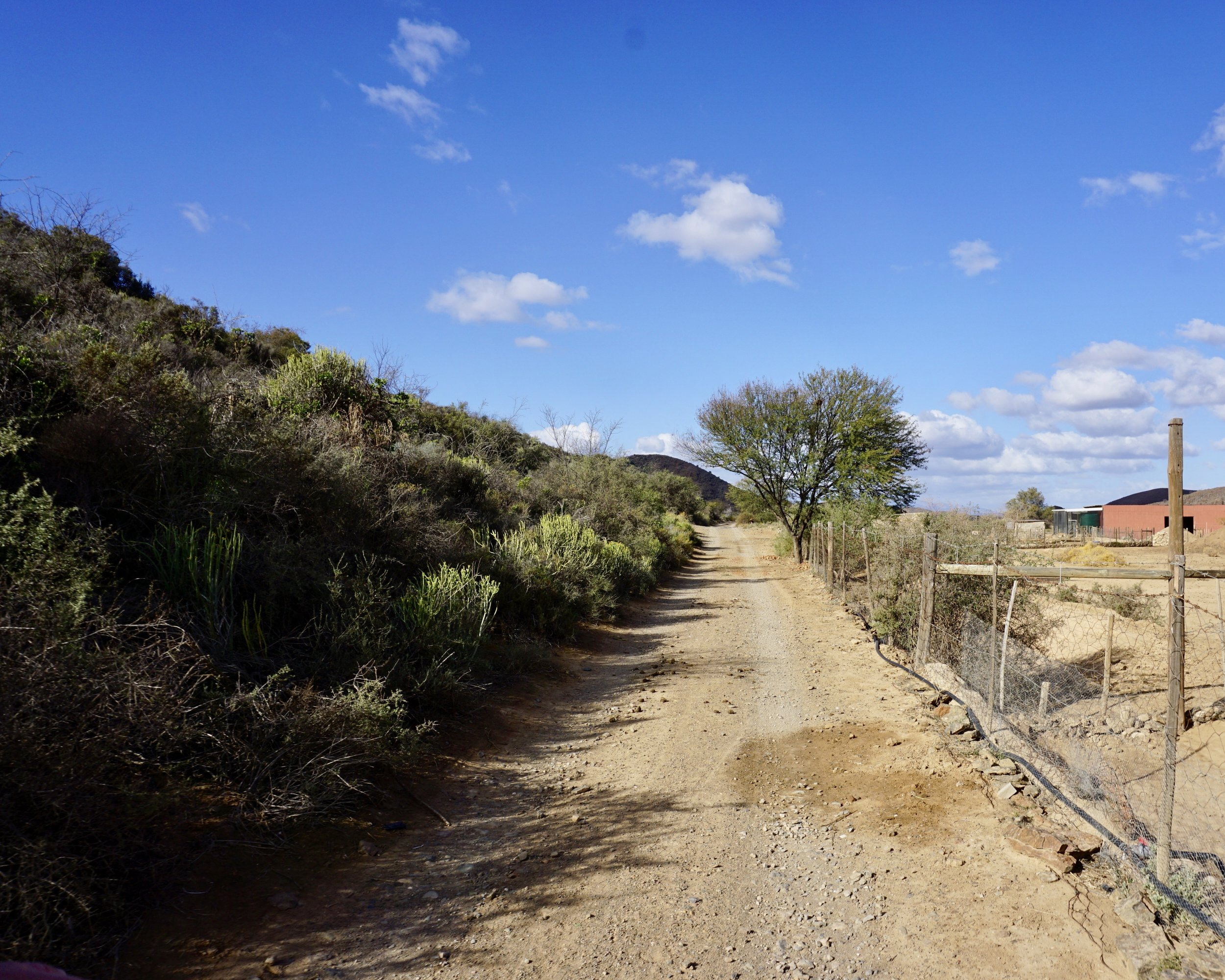 Klein Karoo: Road to Andrew's Farm