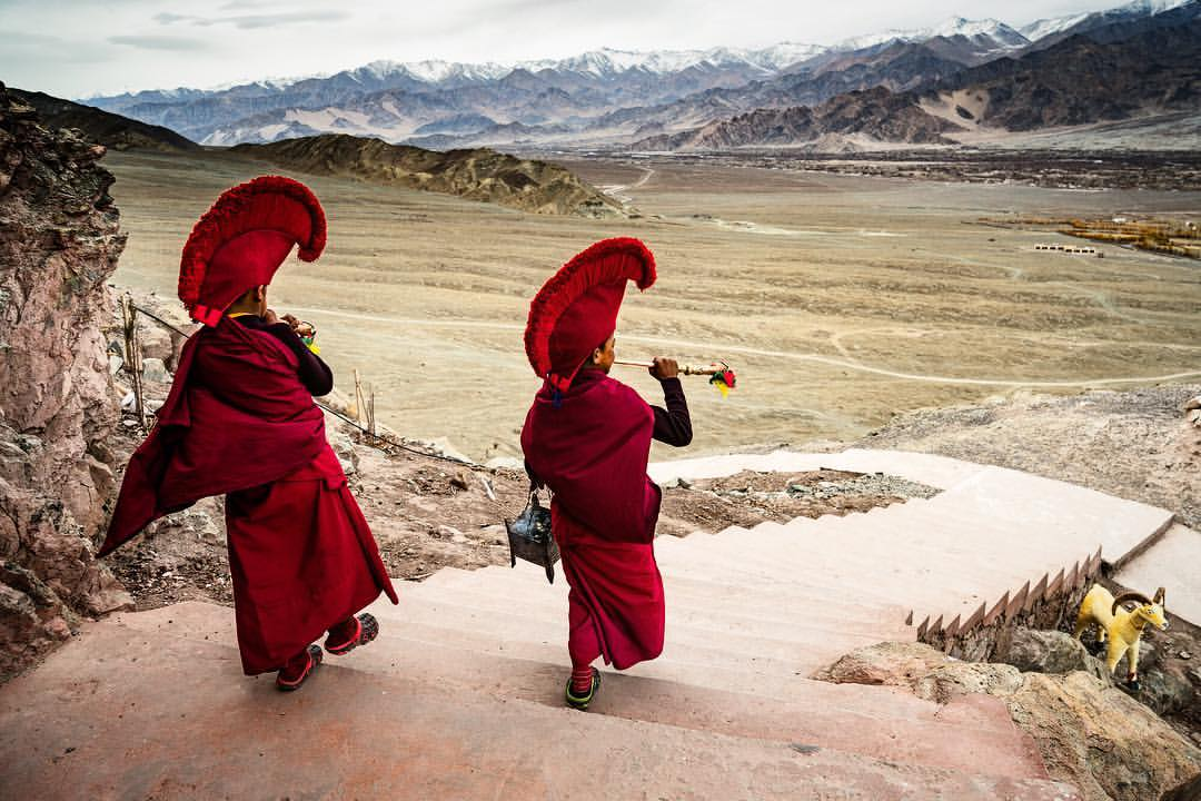I explored parts of India that I had ever seen before and had some amazing experiences. Young monks blowing horns during a remembrance ceremony on the steps of their monastery in the Ladhak region of India in the Himalayas.