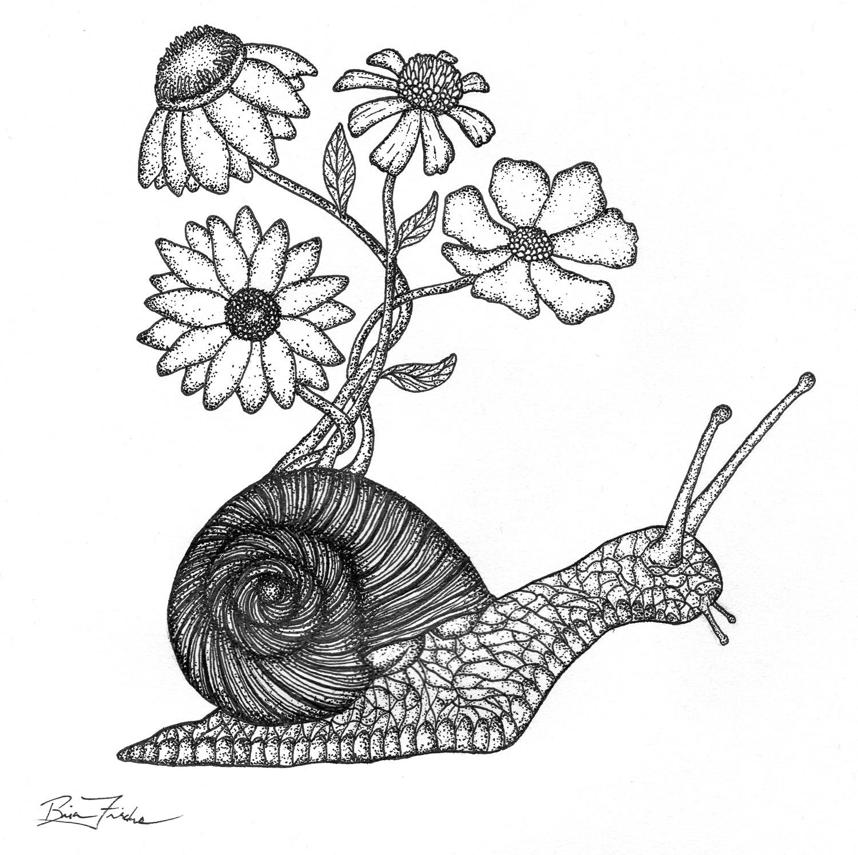 Wildflower Snail #1