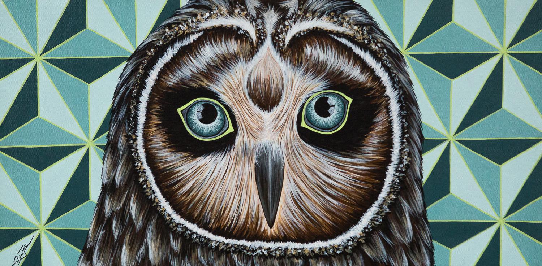 Owl This Again?