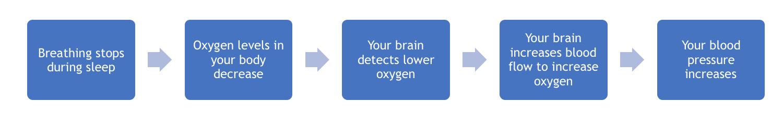 Sleep apnea and weight gain can lead to high blood pressure