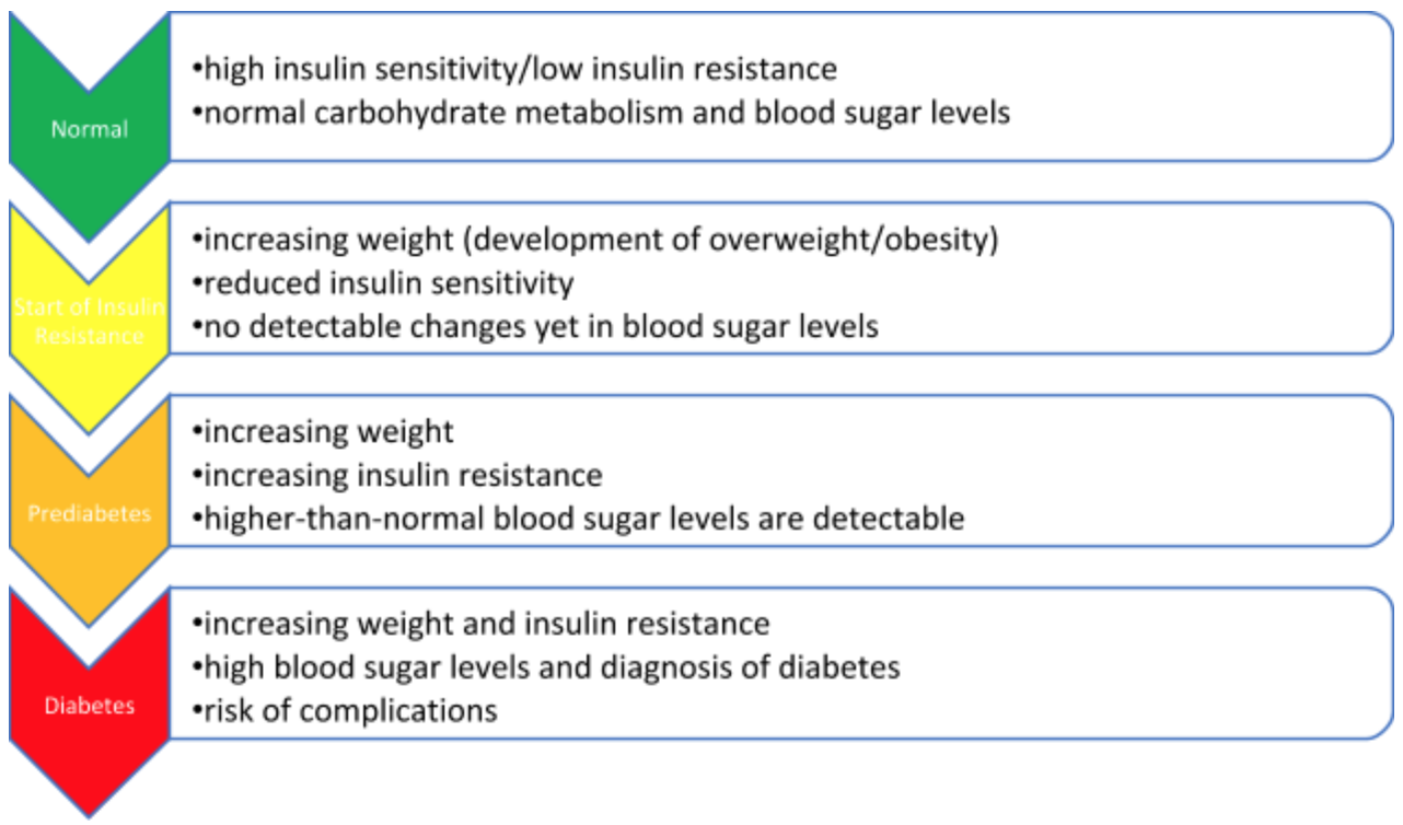 Insulin resistance is often times how prediabetes begins,