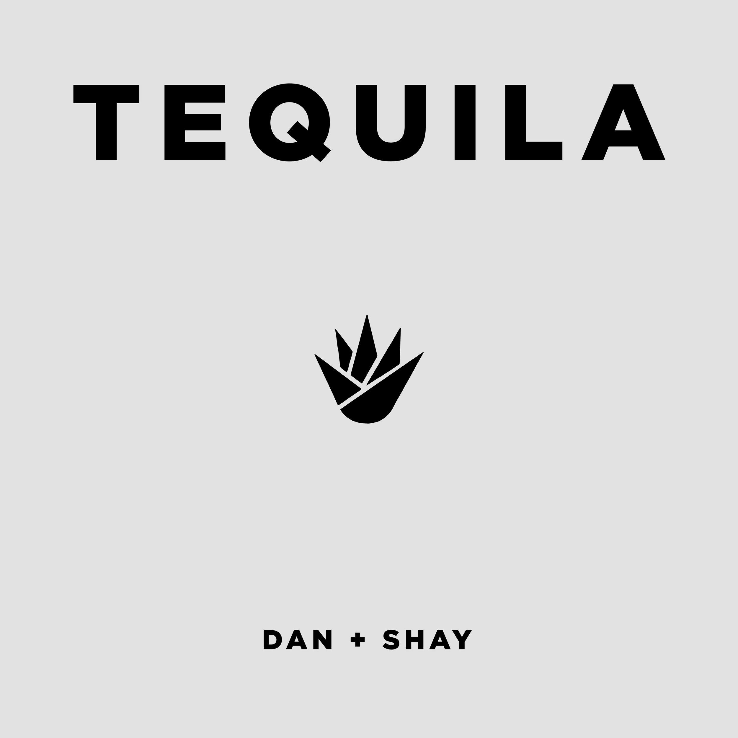 Tequila Art FInal.jpg