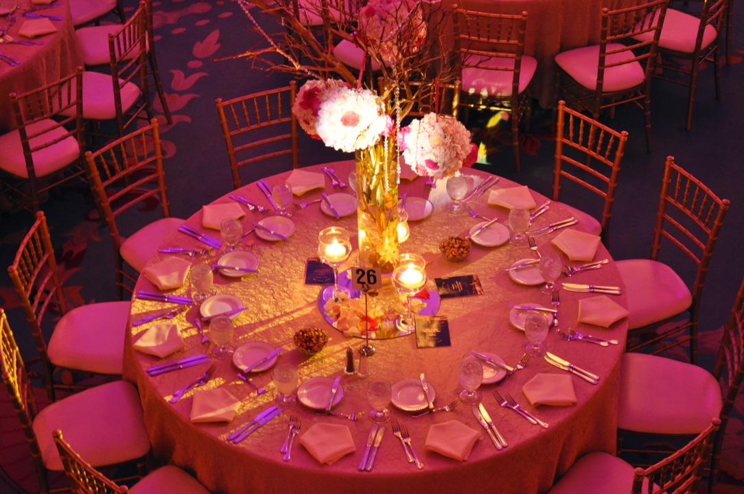 weddings-celebrations-padano-productions05.jpg