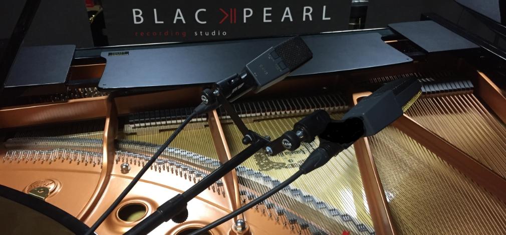 PIANO MICRO.jpg