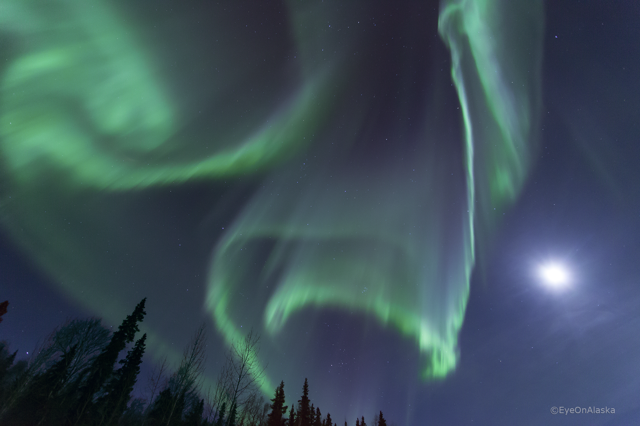 Auroral Curtains