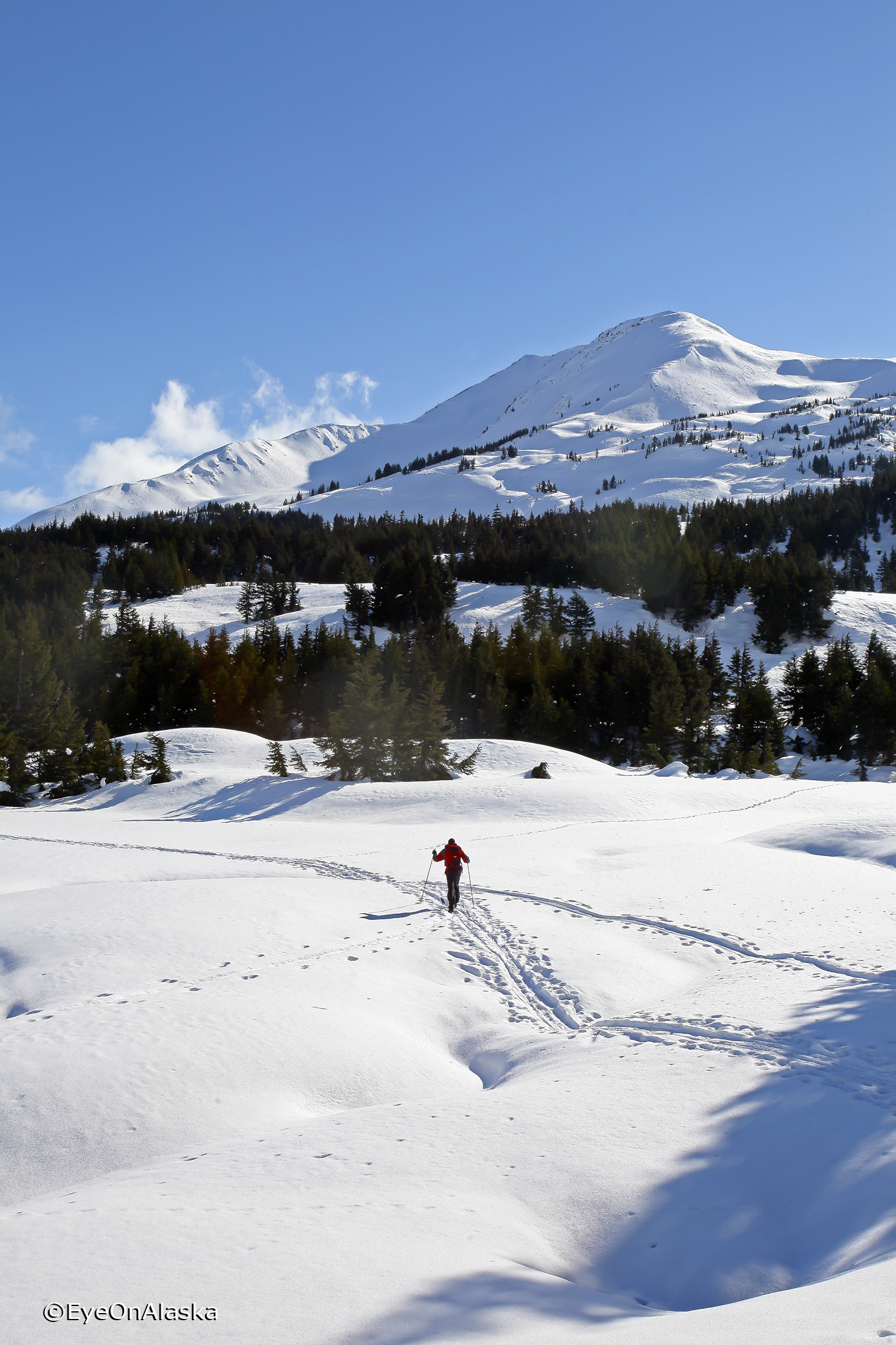 Back country skiing #2
