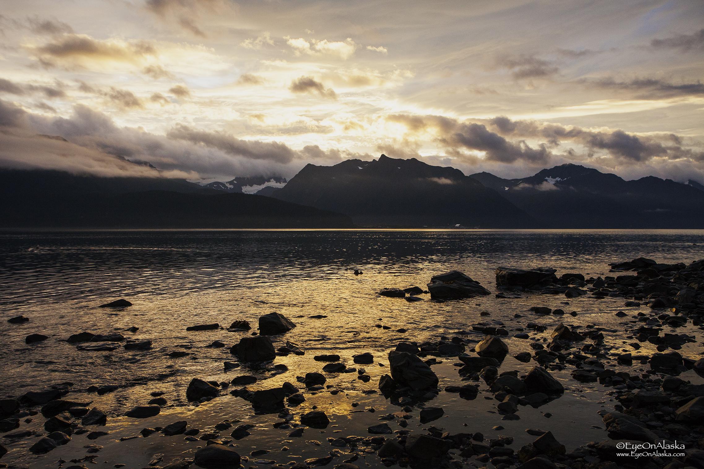 Sunrise low tide.