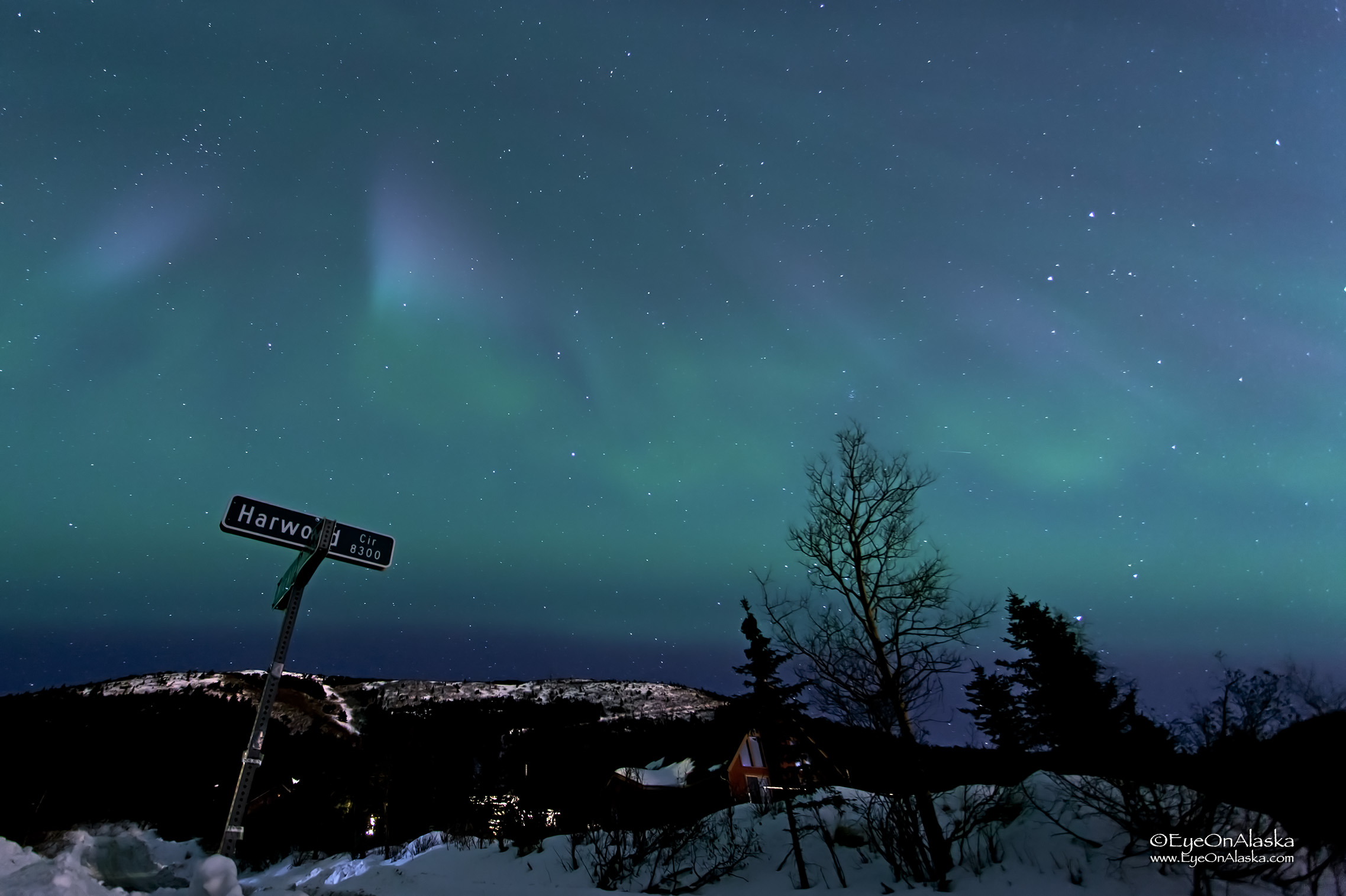 Looking straight south at the top of our driveway. The aurora has to be very strong to show up in this direction.