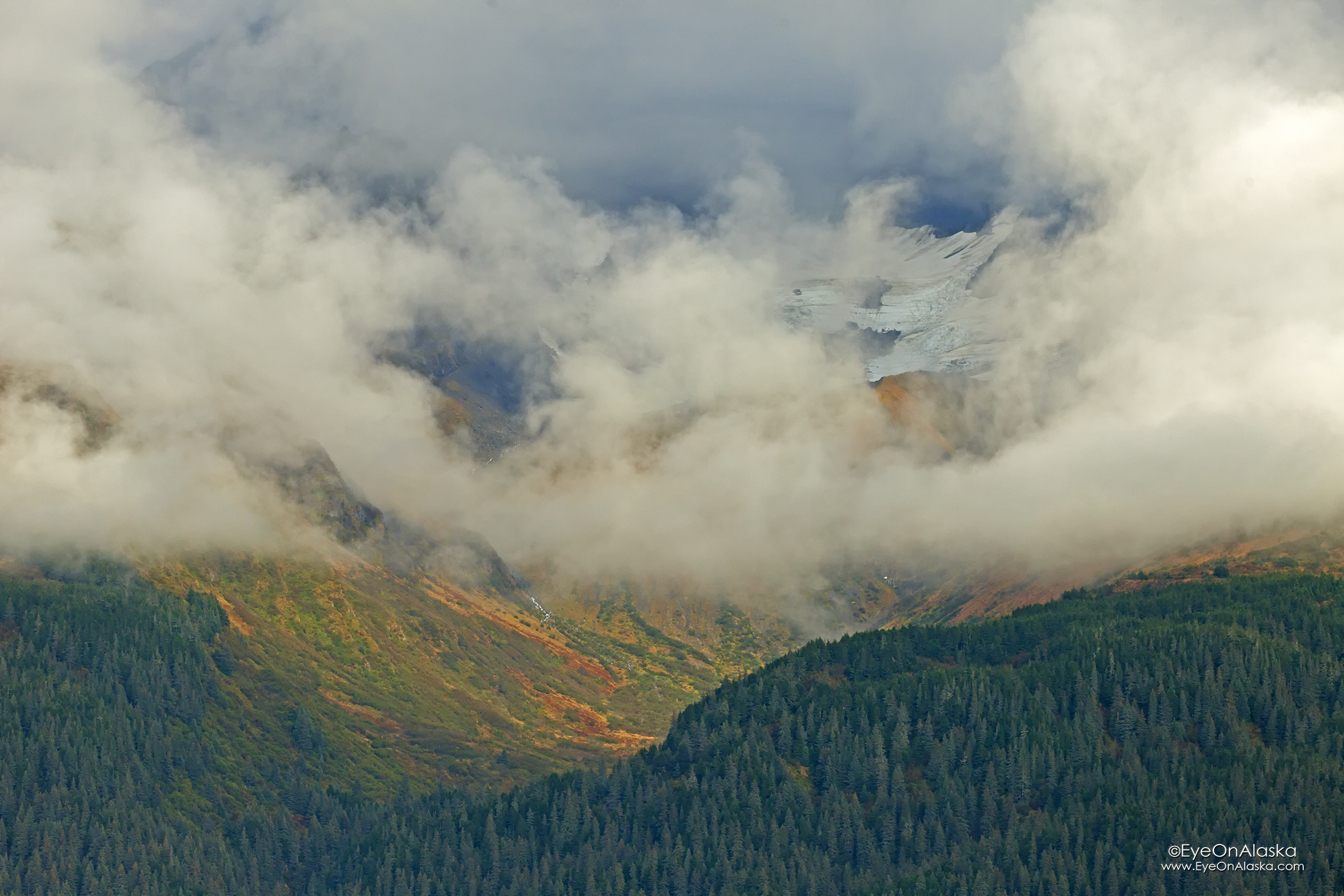 The view across the bay. Hanging glaciers hiding in the clouds. Fall colors in the alpine meadows.