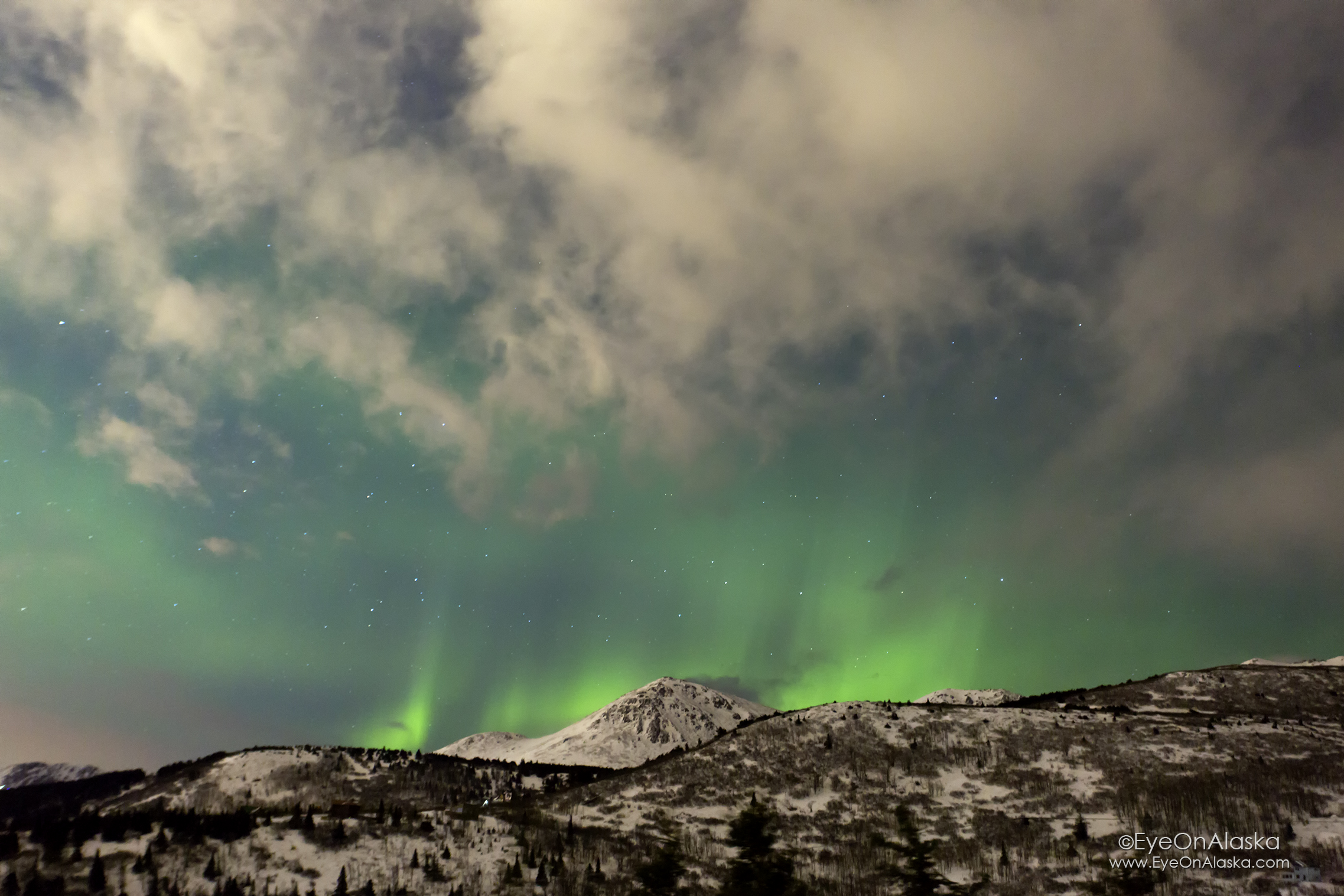Wasn't expecting to see any aurora, but the clouds opened up for just a short time.