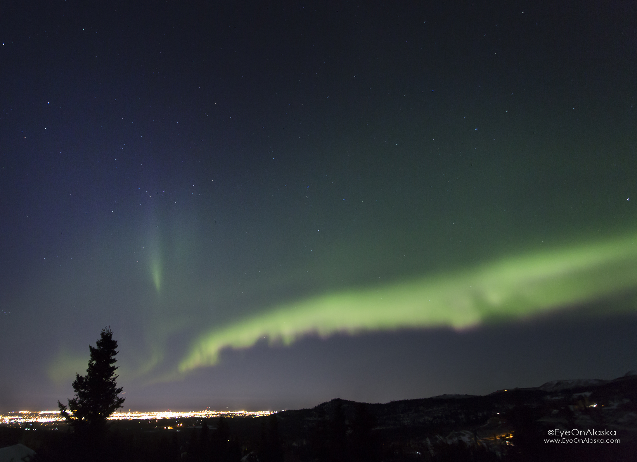 Just after 1:15am the sky started to explode. Lights over Anchorage with some pink showing at the bottom of the aurora curtains.