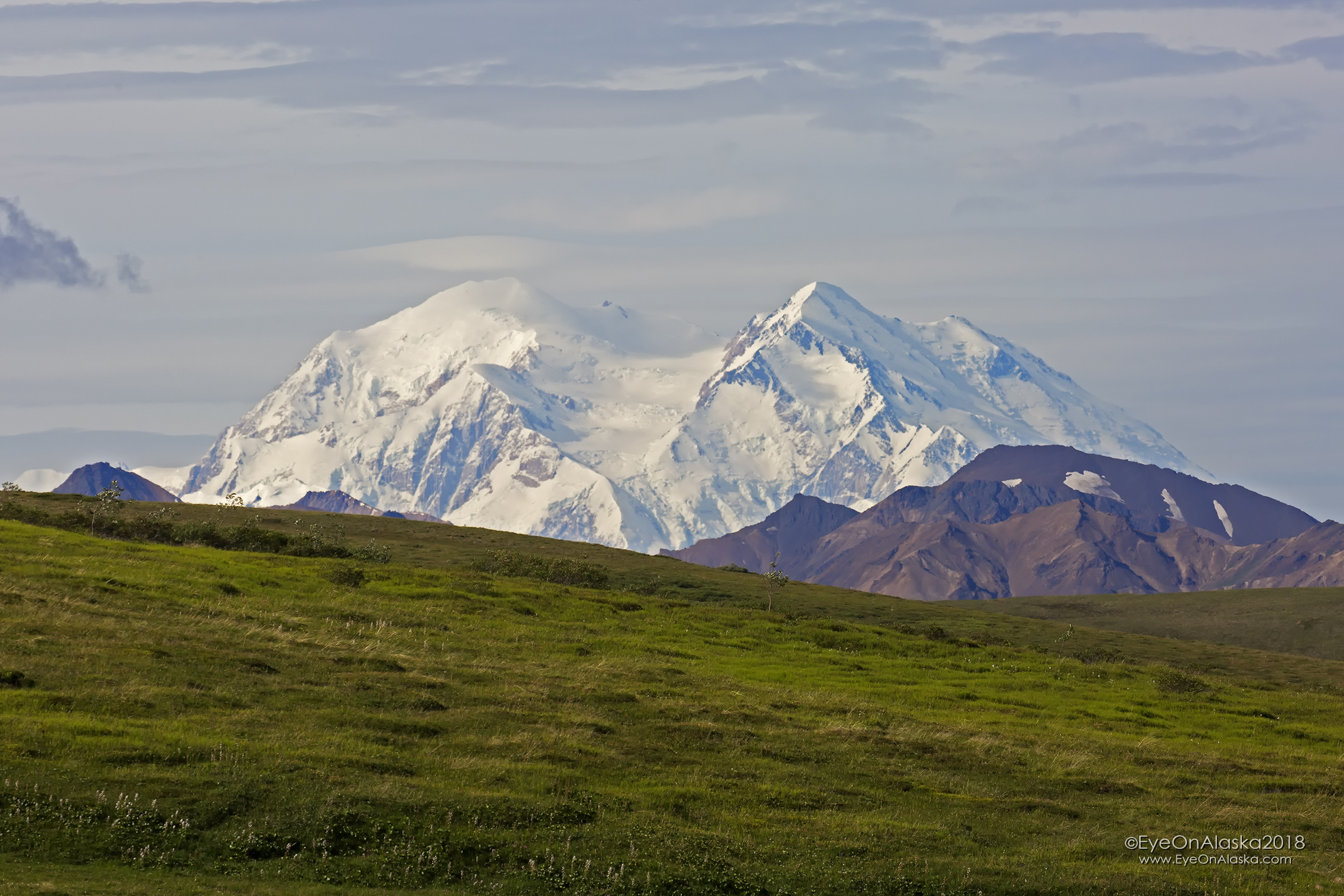 Denali is out once again for us on our last full day in the park.