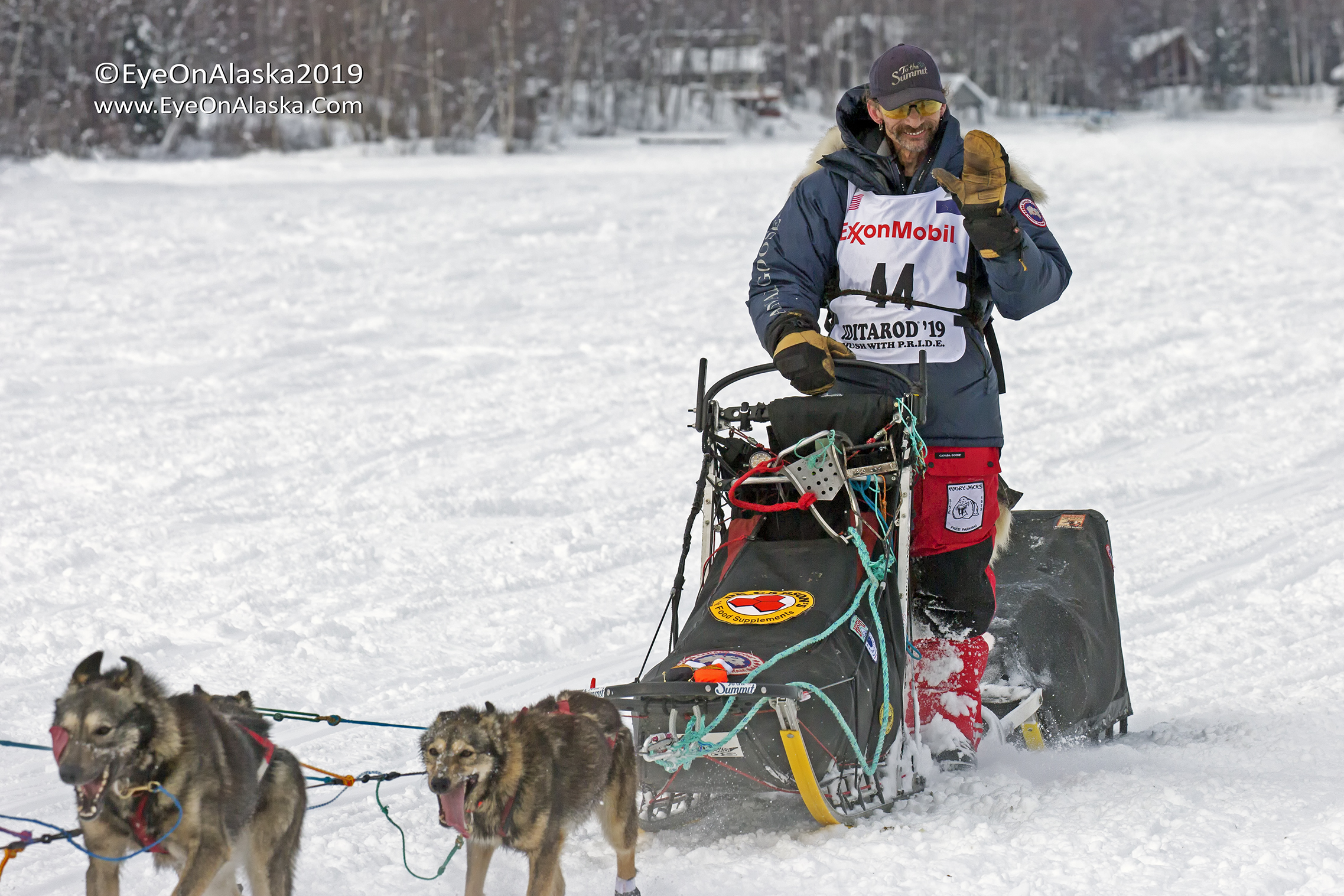 The toughest musher on the trail, 4 time winner of the Iditarod, 4 time winner of the Yukon Quest, cancer survivor.  Lance Mackey.