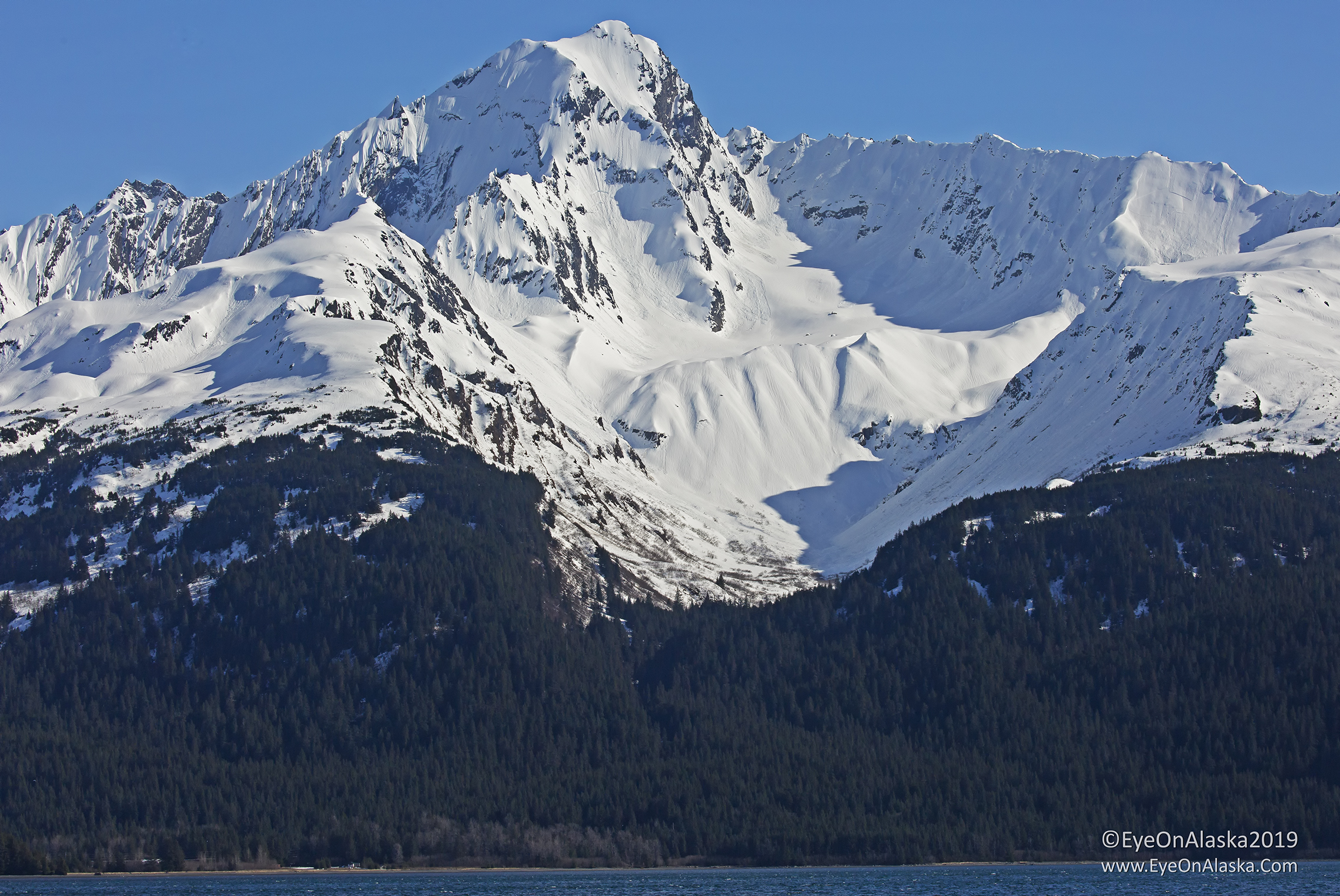 Love the contrast in Spring and Fall when the mountains around Seward are covered in bright snow.