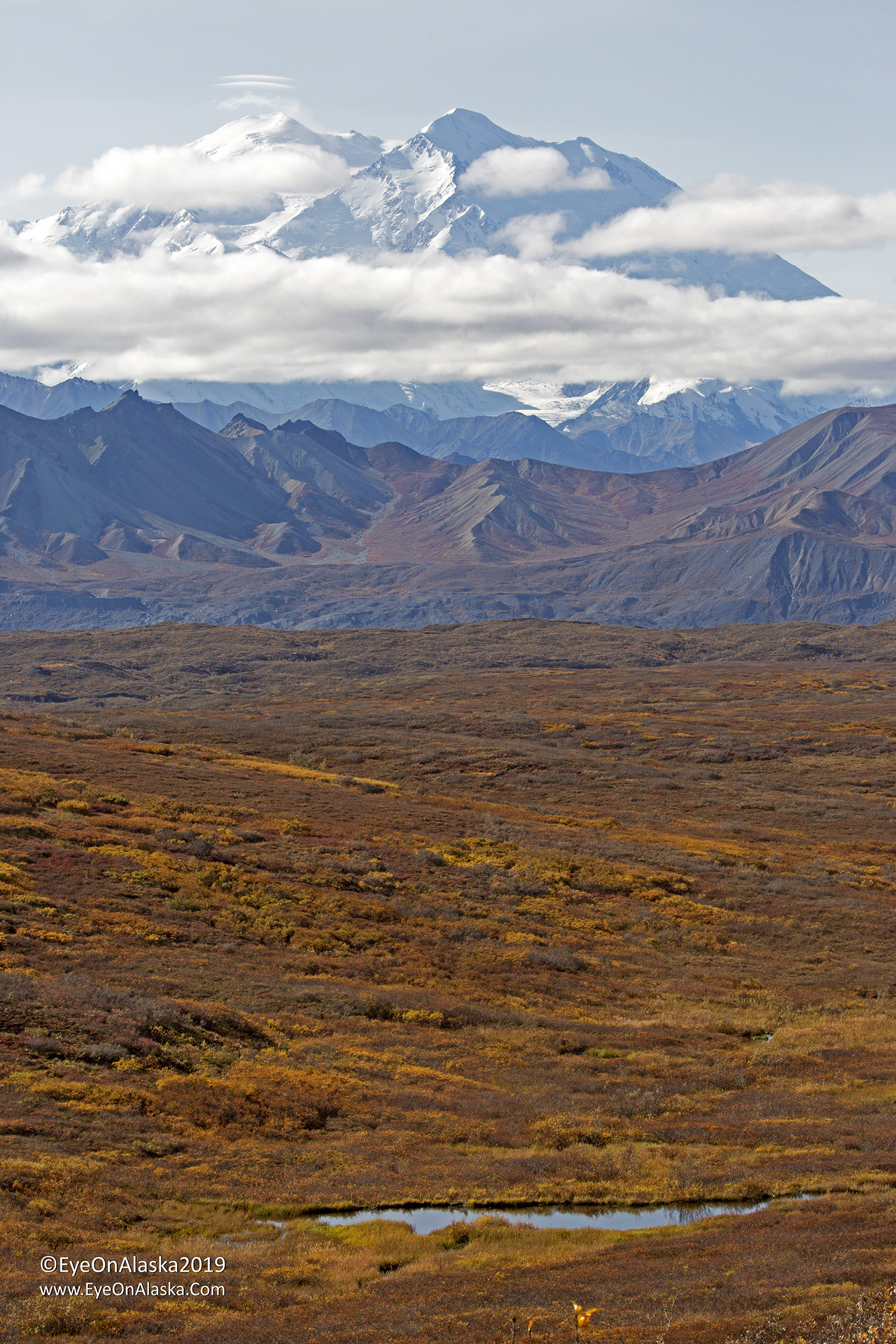 One of the kettle ponds along the way to Wonder Lake.  Denali in the distance.
