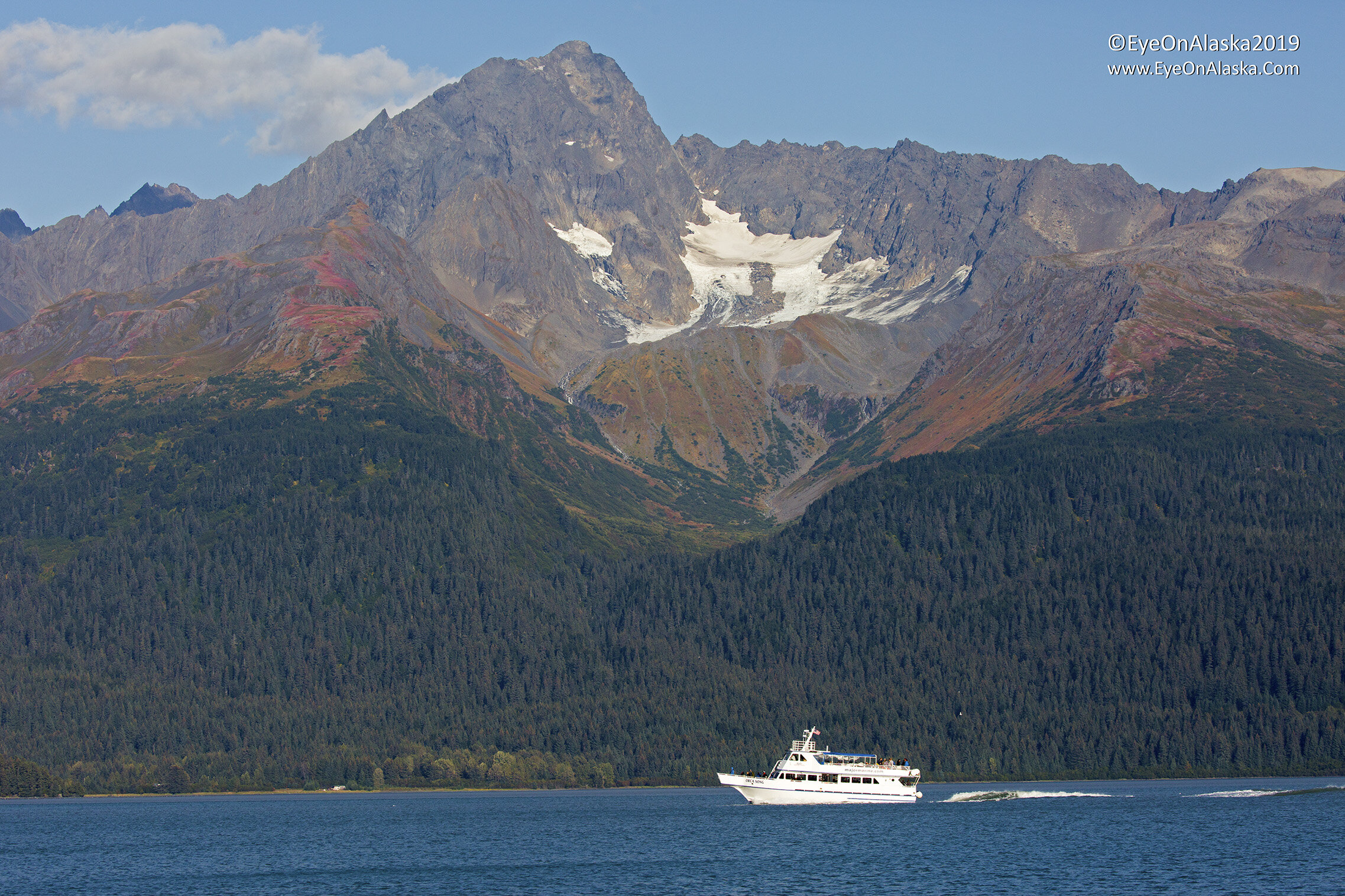 Gorgeous fall colors on the mountains across Resurrection Bay.