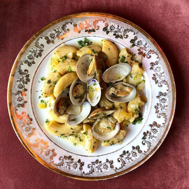 rigatoni, clams, herbs, preserved lemon, thrifted golden plate, pink velvet