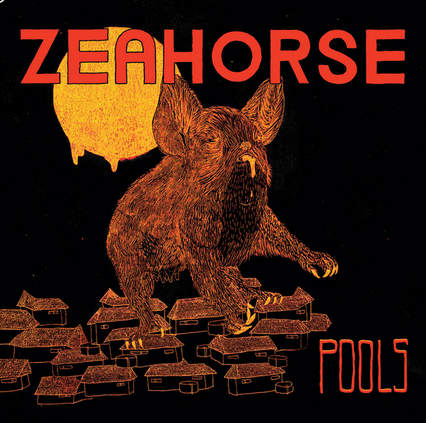 "Zeahorse ""Pools"" album cover 2013"