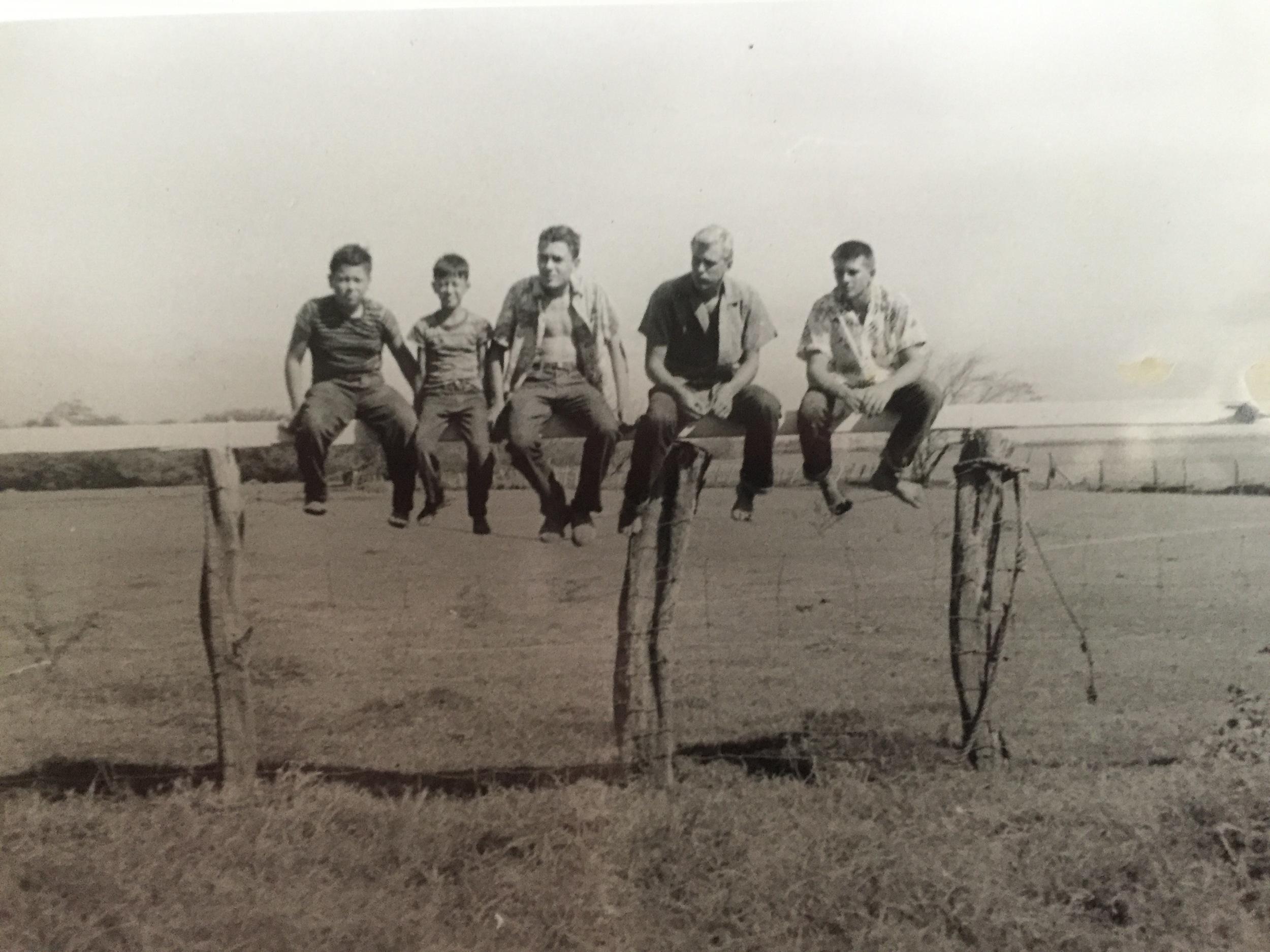 Boys on the Fence