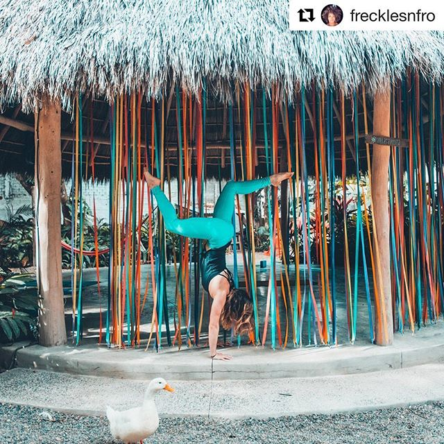 Yoga, ribbons, ducks and fun 😋in the Secret Garden 🌿💕 We #love you come here and #play around, #enjoy the place, a #great #breakfast a #challenging or #relaxing #yoga #class, a #purifiying #Temazcal or just #walking around the vegetable #garden and #playing with our #pets  #sayulita #hotel #villasayulita #permaculture #secret #garden #allinvited #love #recycle #compost #chill
