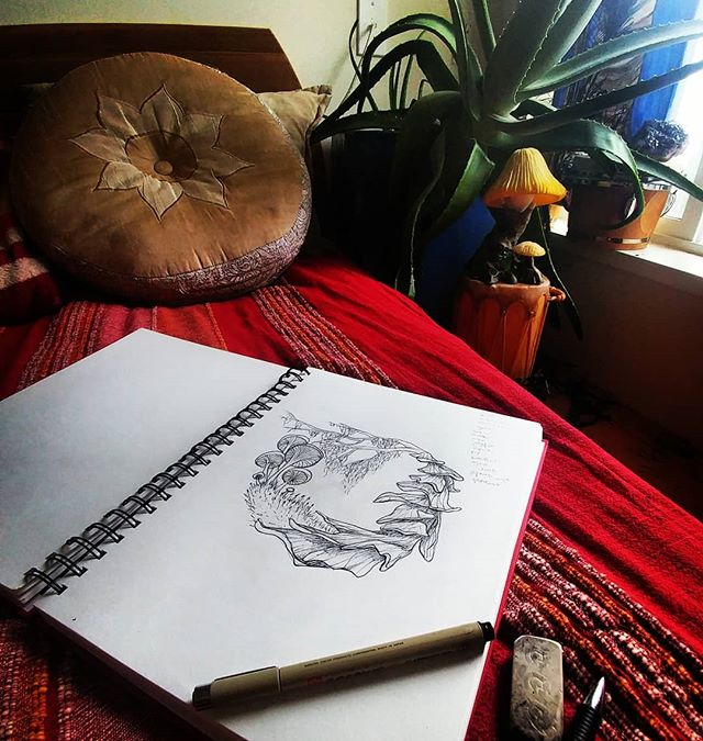"""Ahhhhh... It's been a deeply fulfilling Sunday...slept in, sketched out the first of a botanical """"mini"""" series of paintings, played with a kitty, brunched with friends on the Sunshine Coast, massaged, took a boat ride, forest bathed, played w a doggie, had dinner with friends in Vancouver...ALL the things!! Feeling SO grateful. 🙏🌲❤ . . . #gratitude #honourquietude #sundayfunday #botanical #plants #plantart #botanicalart #drawing #sketch #art #artinspiration #artist #inspiration"""