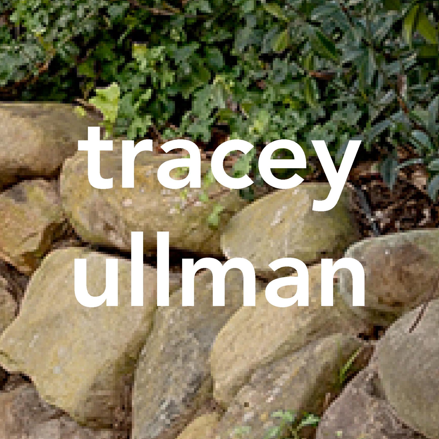 tracey ullman woodshed recording studio malibu ca