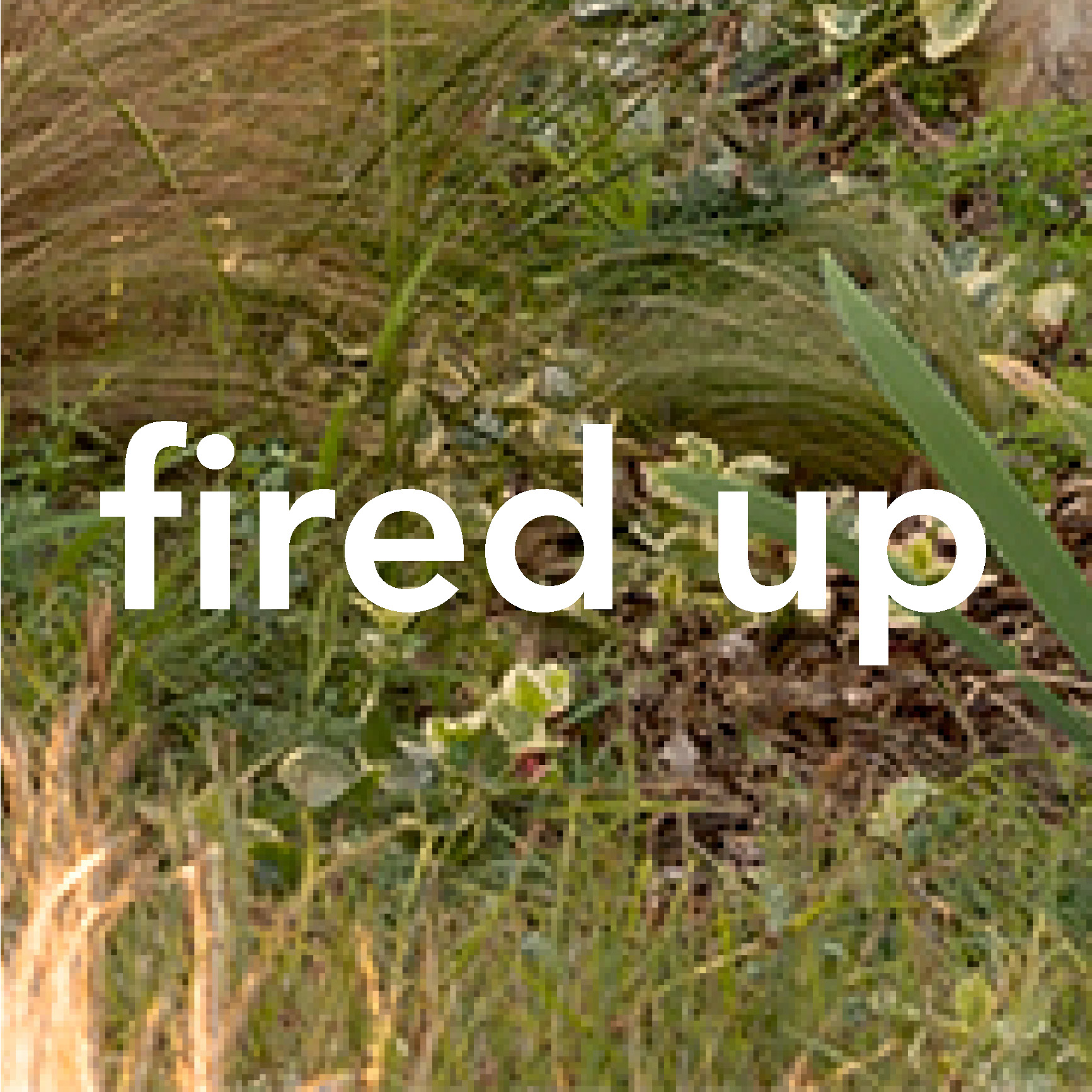 fired up woodshed recording studio malibu ca