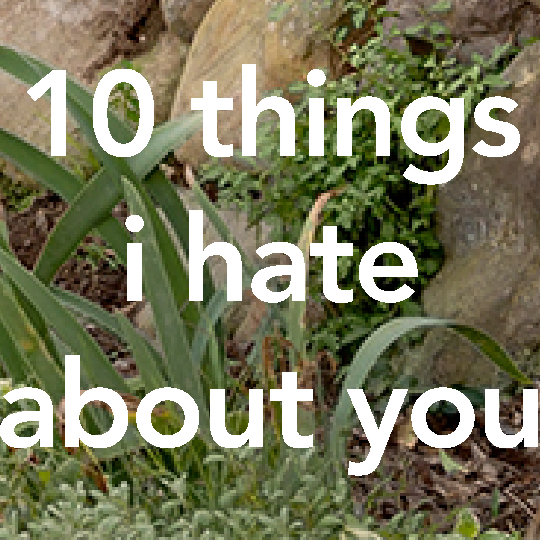 10 things i hate about you woodshed recording studio malibu ca