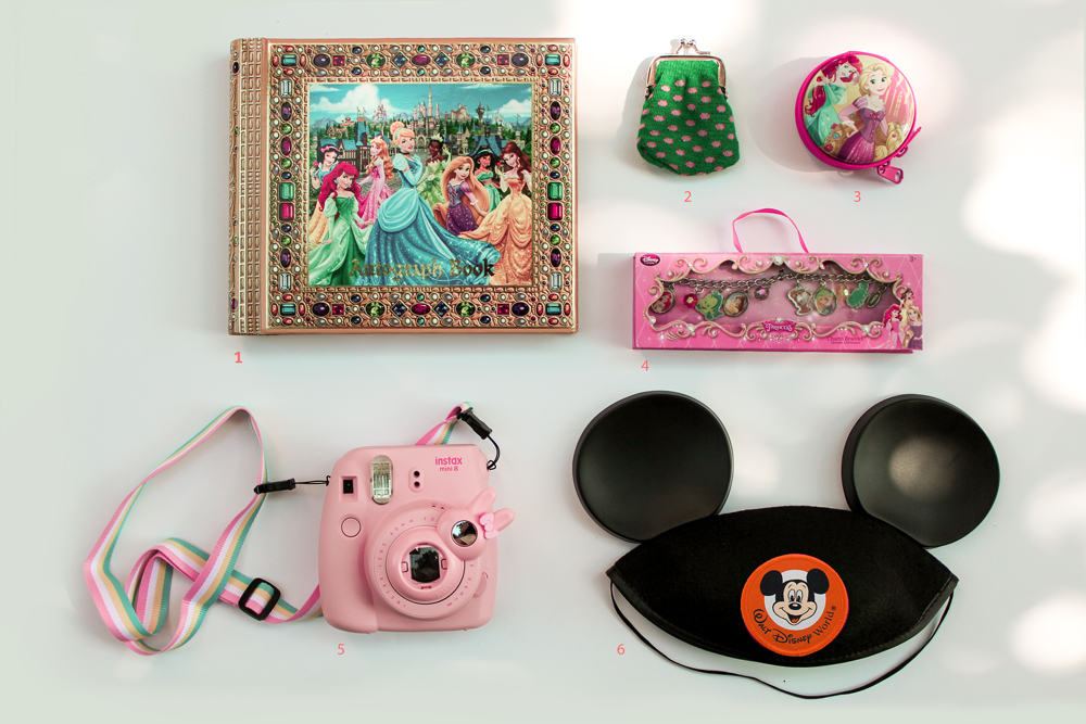 1.    Disney Princess Deluxe Autograph Book and Photo Album    2.  coin purse full of pennies   3.  trading pins in carrying case   4.    Disney Princess Cameo Charm Bracelet     5.   Fujifilm Instax Mini 8 Instant Camera    6.    Mickey Mouse Ear Hat