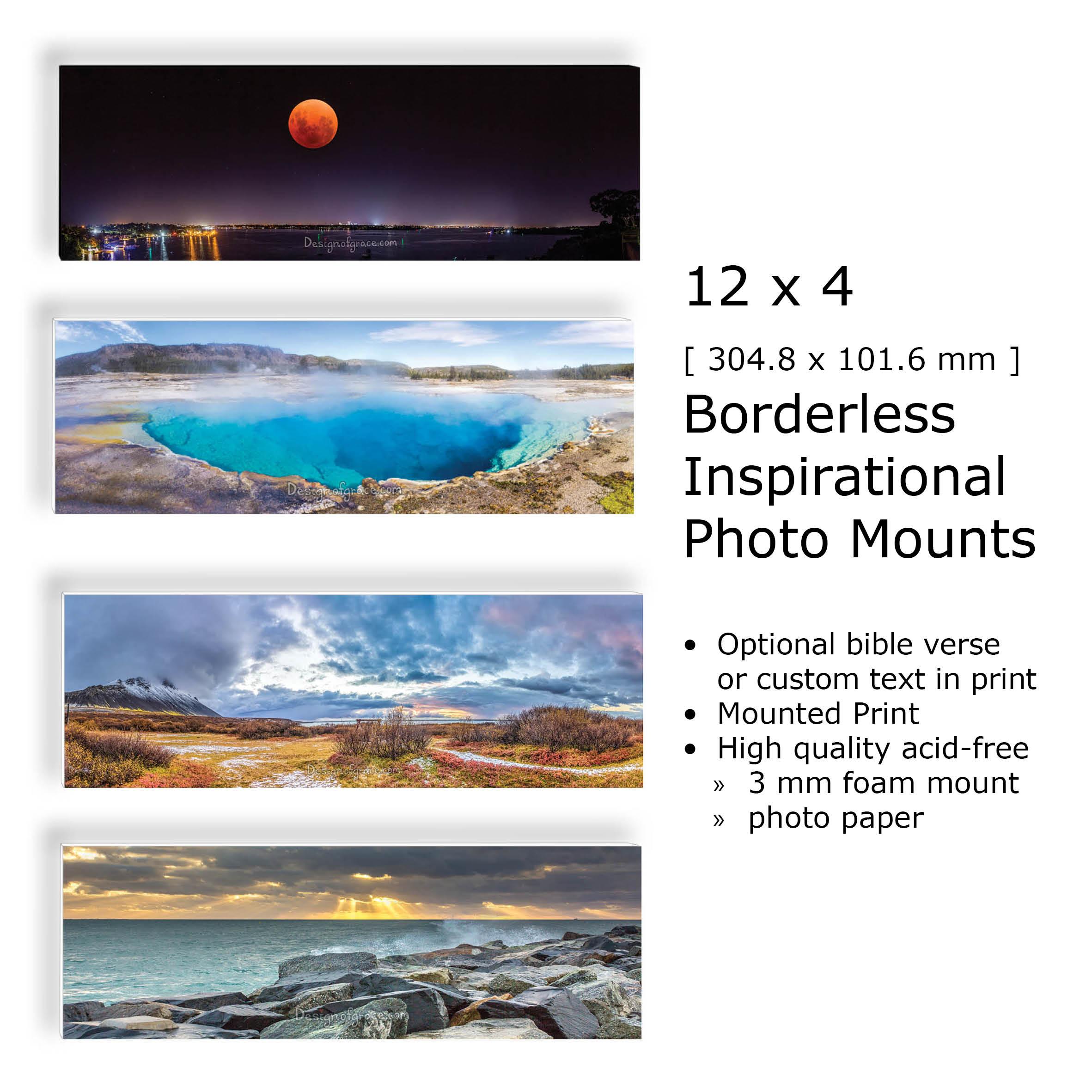 12x4_inspirational_mounts.jpg