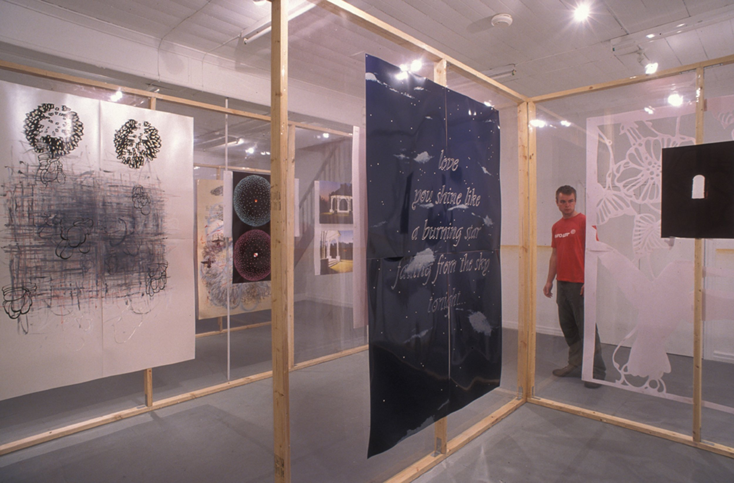 Peter Alwast,  Working Like a Tiger , installation view, August 2003. Photo by Rod Bucholtz. Image courtesy of Grant Stevens.