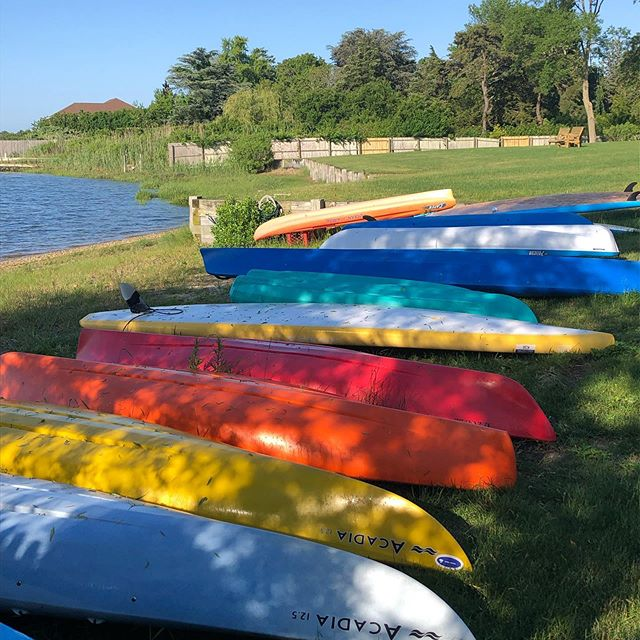 Let's Paddle!  I'm taking the Board! #paddlelife #suplife #paddleon #getupstandup #standupandpaddle #paddletothesea #sup #getonyourboard #suplifestyle
