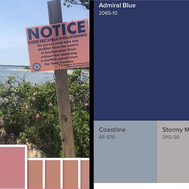 Notice! #lookandsee #capturecolor #shellfishing #findinspiration #greatcolorcombo #takenotice #cleanwaterforall