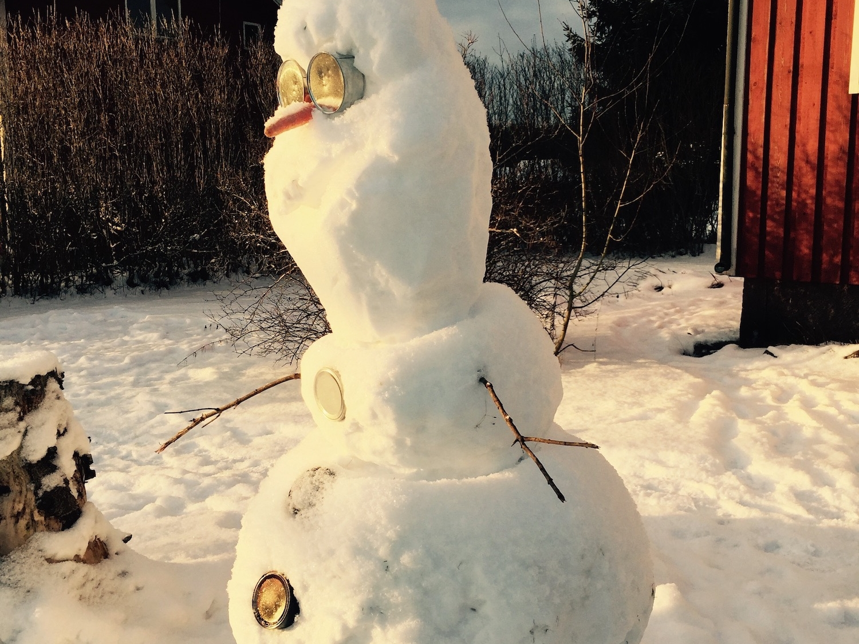 My name is Olaf and I love warm hugs!