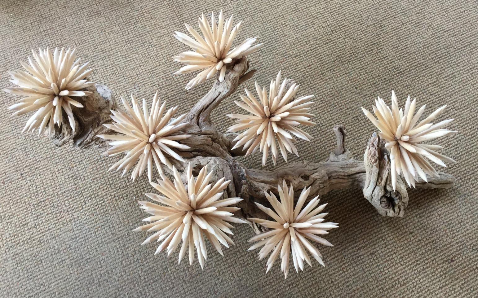 """David Rau """"Sea Urchins"""""""