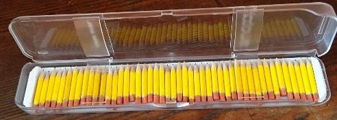 Karen Carr pencils Web.jpg