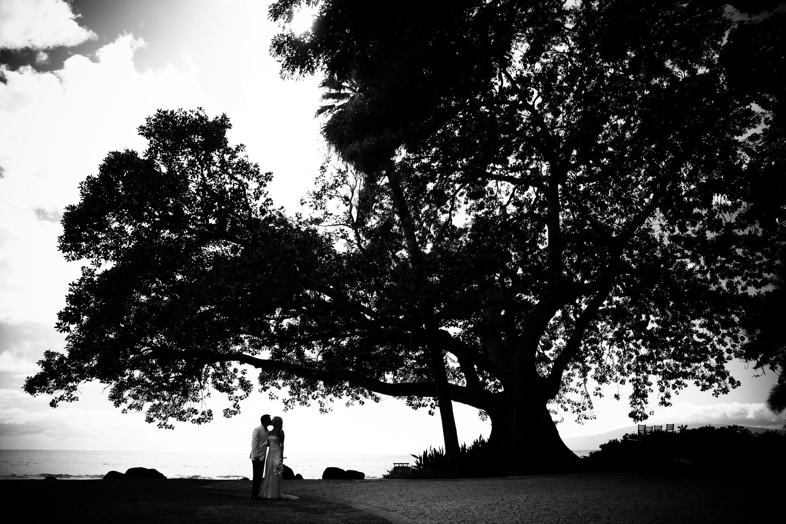 B&W Tree Kiss high res.jpg