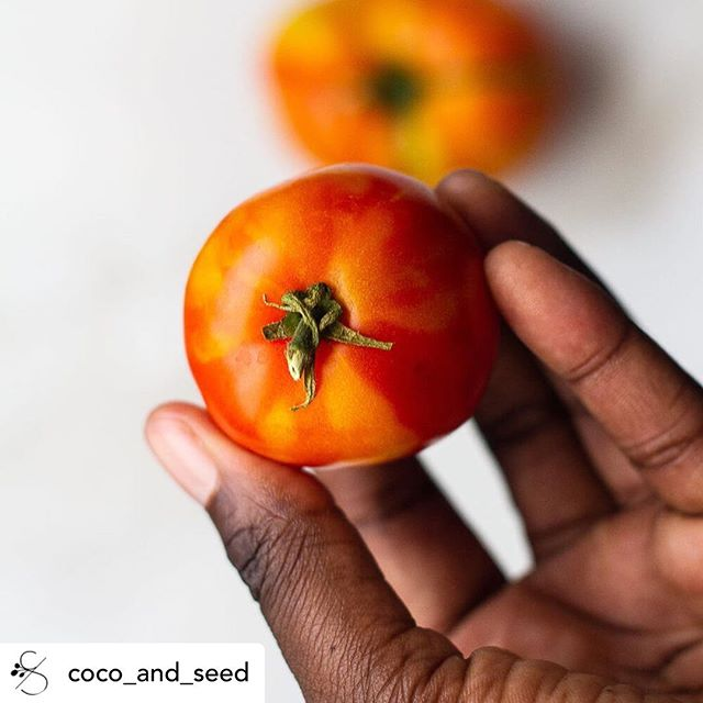Does this hand look familiar? 💅🏾 reposting my own photo because well, I'm proud of these tomatoes lol.