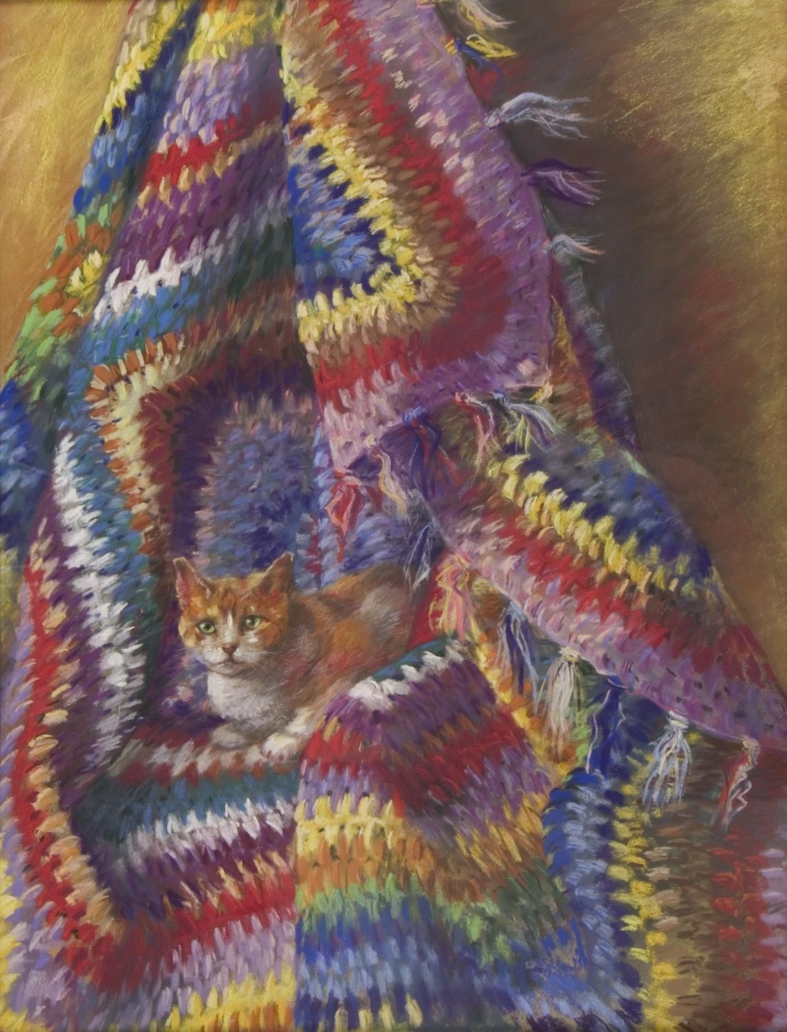 Kitten in Shawl