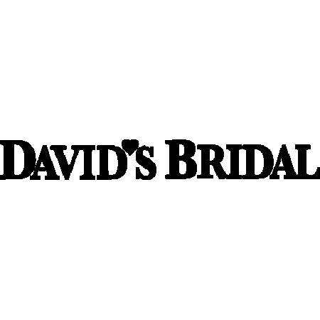 blt7358145038190e7c-David'sBridal_8422.png