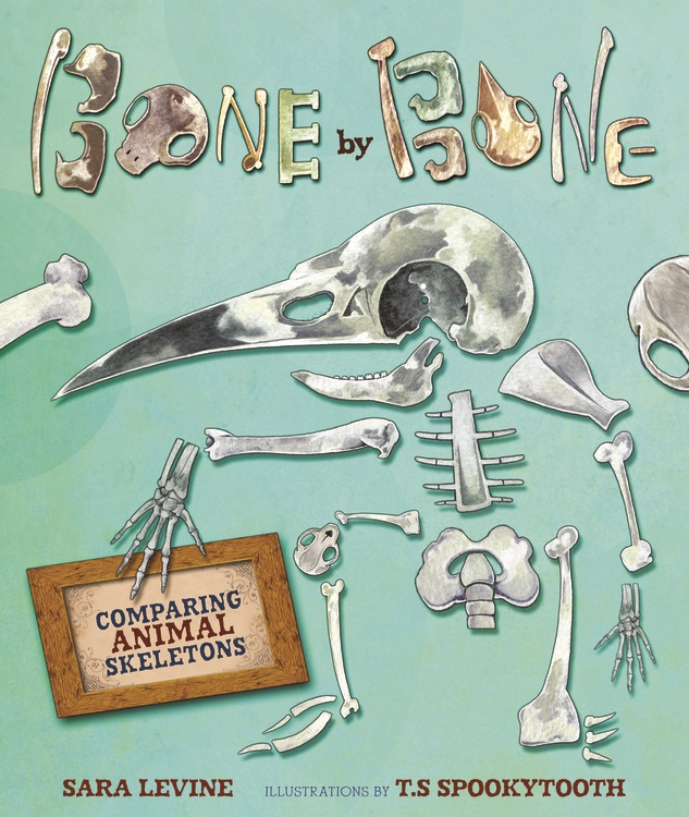 Bone by Bone Book Cover