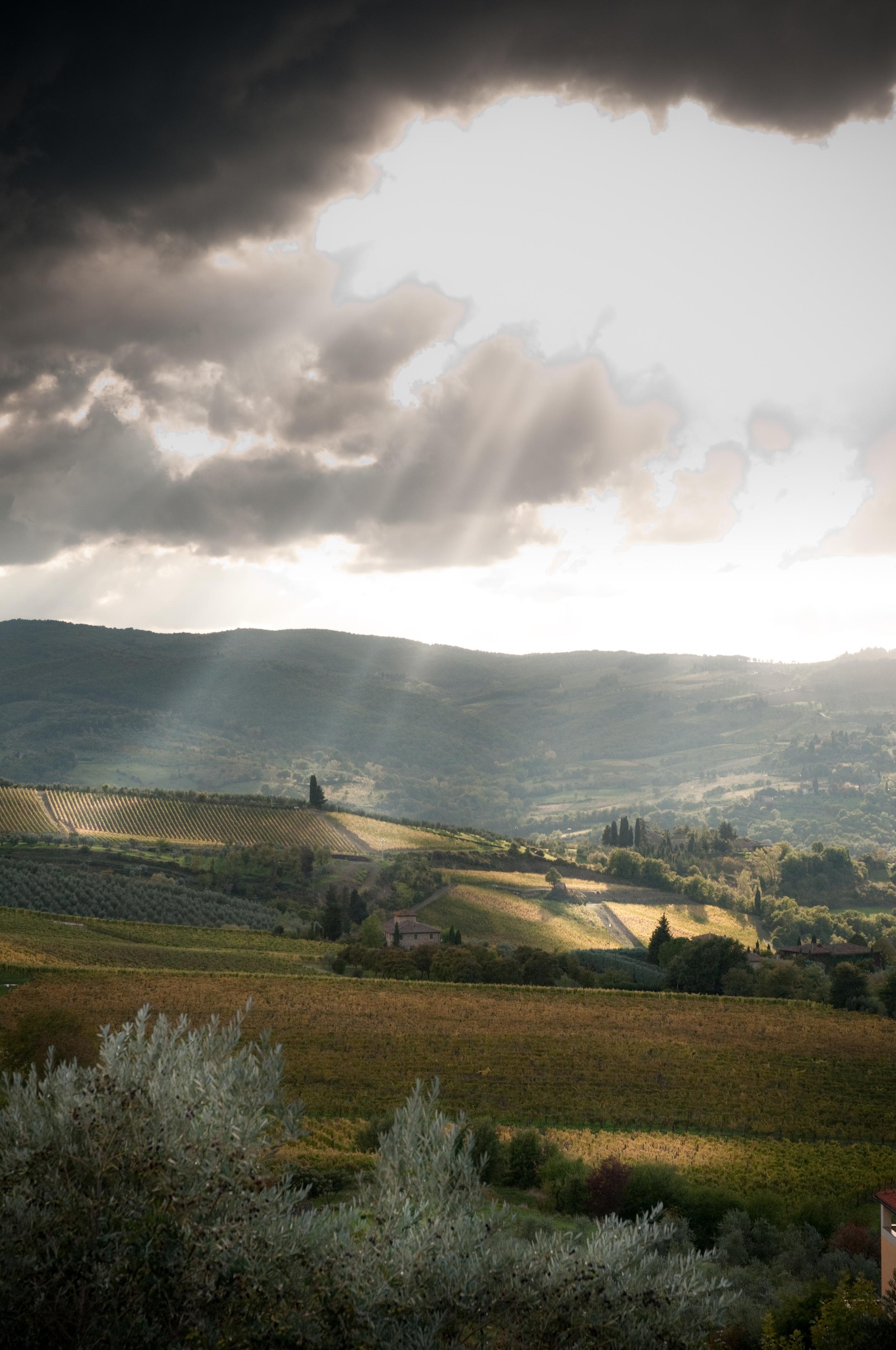 2010 Tuscany-361.jpg