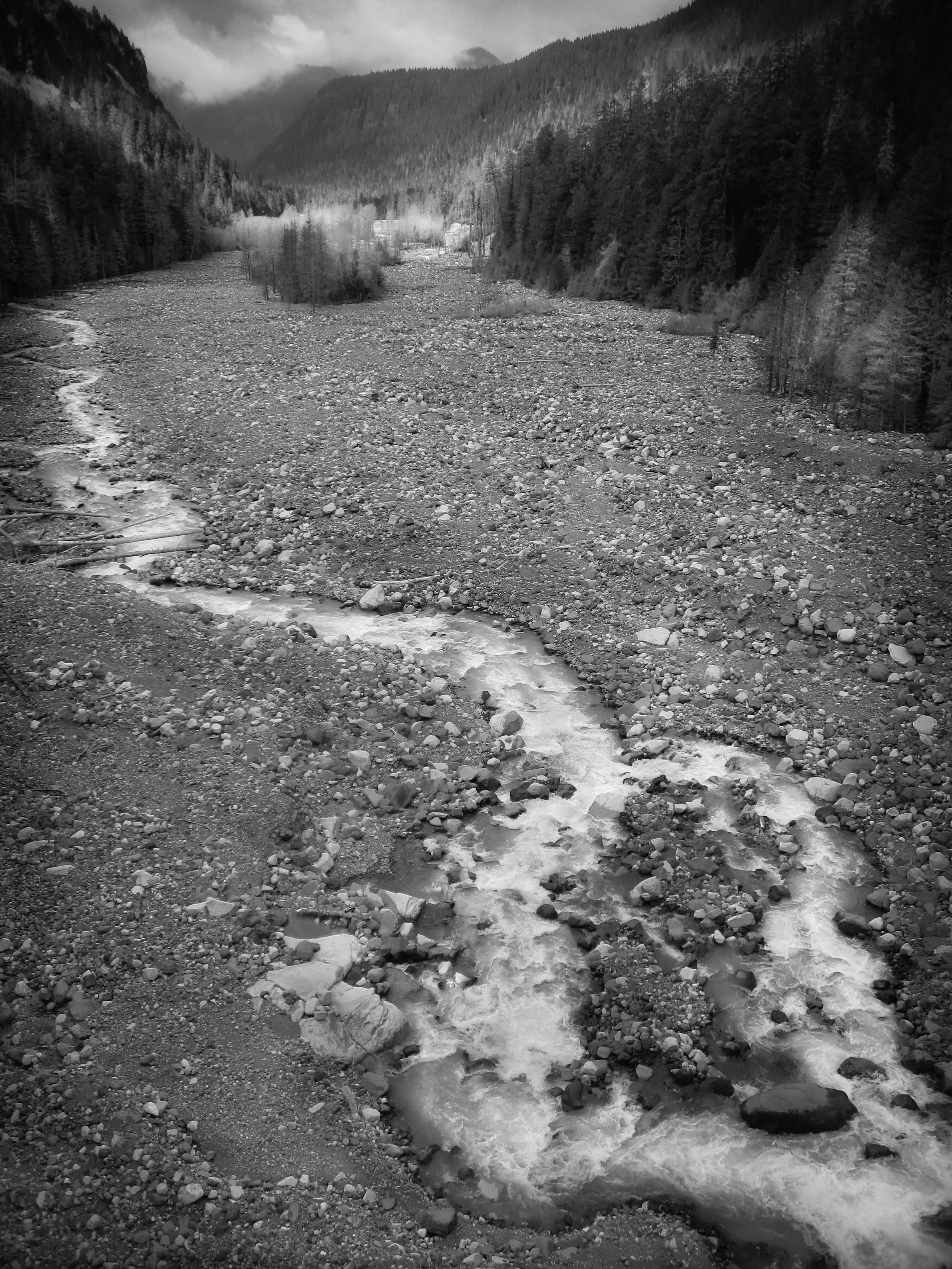 Mount Rainier N.P., WA