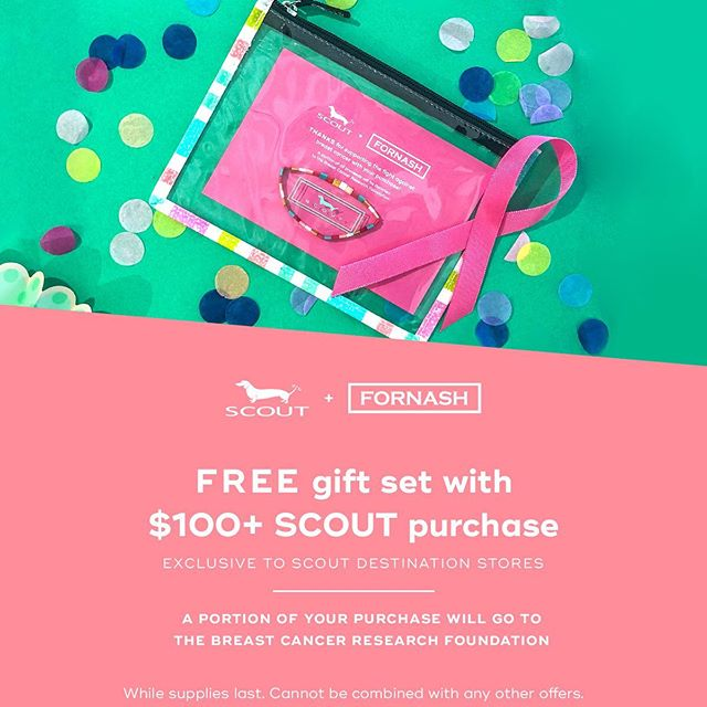 Join us as we partner with Scout to give back during Breast Cancer Awareness month!  Open 10-6 today!!