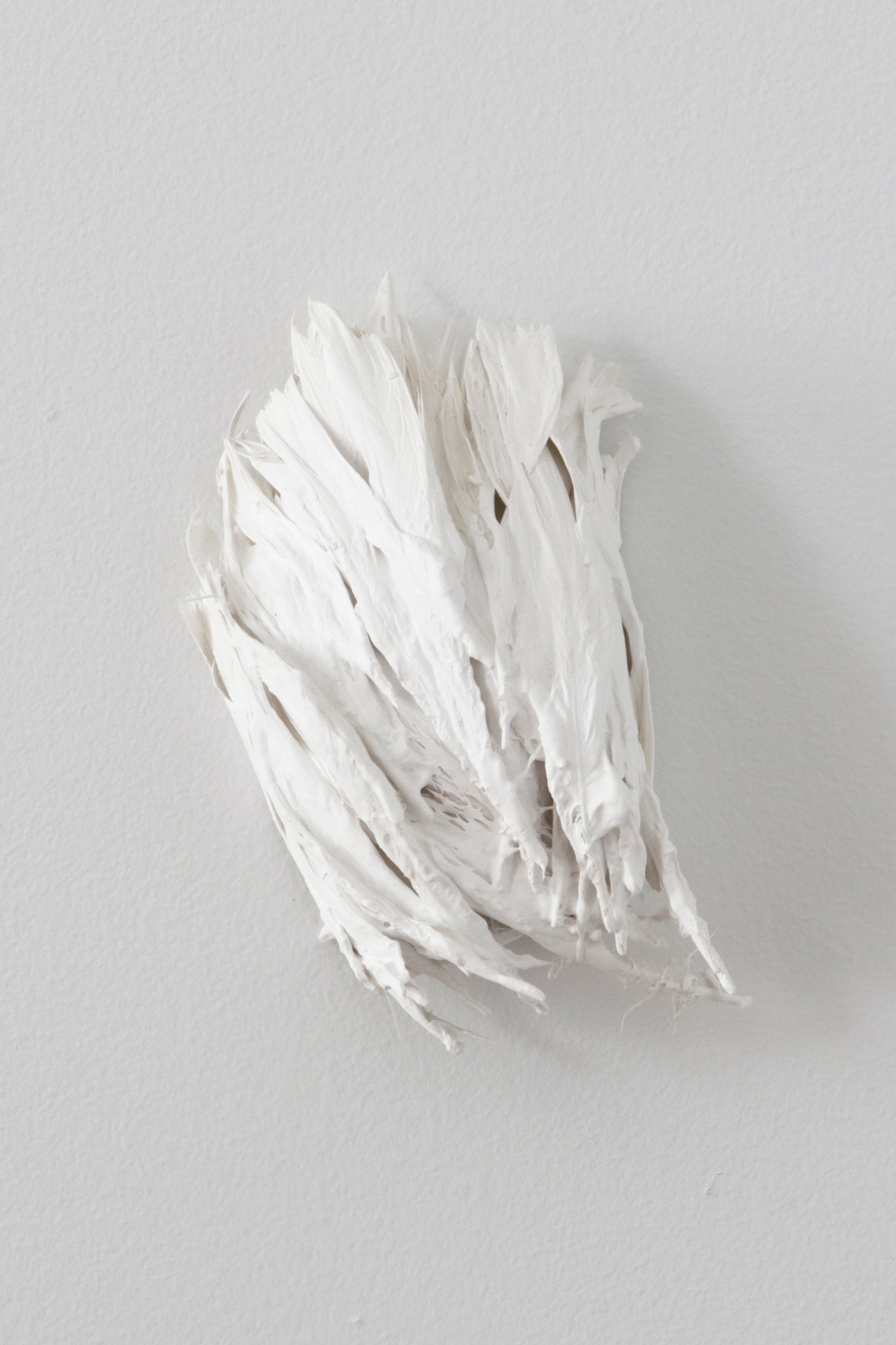 Feders   2014 plaster, feathers 6 x 7 x 3 inches